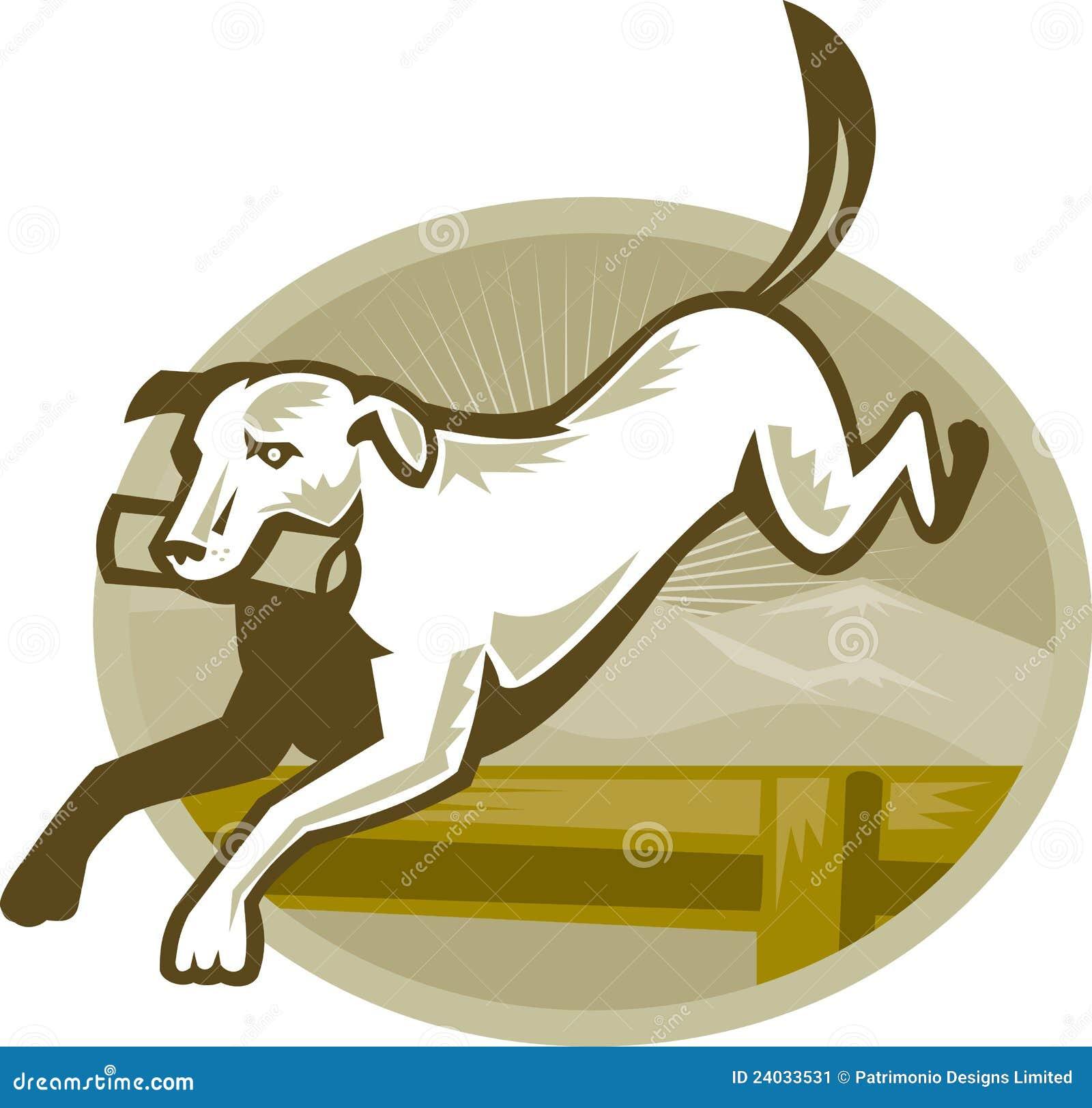Retriever Dog Training Jumping Hurdle Retro
