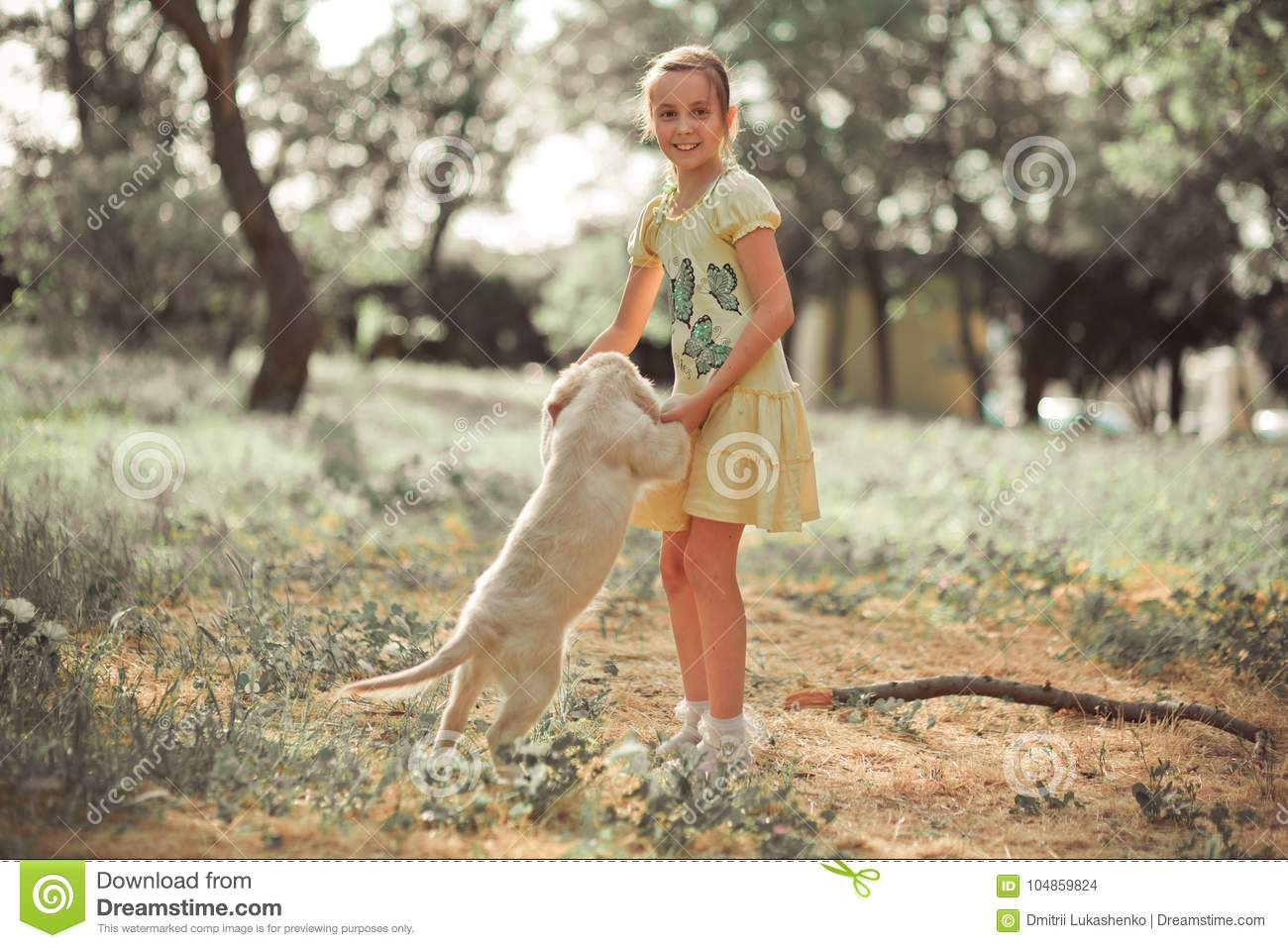 Retriever Pup Lovely Scene Cute Young Teen Girl Enjoying Posing Summer Time Vacation With Best Friend