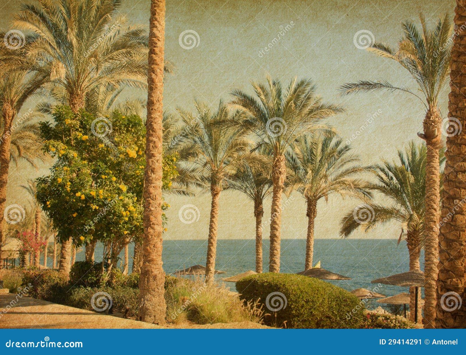 Retro avbilda av strand