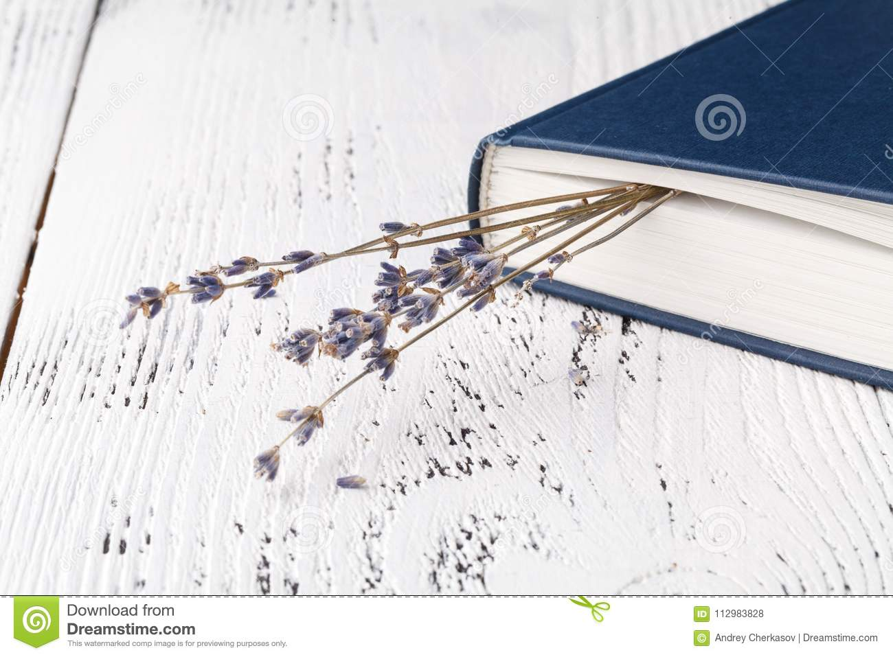 Retro bouquet of dry lavender with books