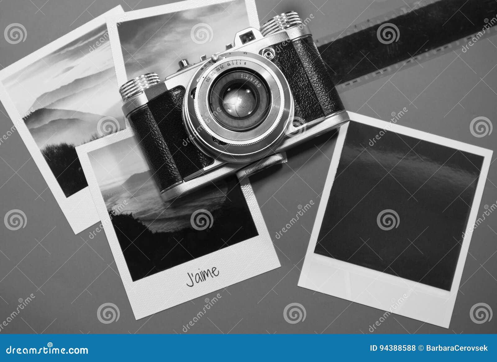 Retro carte istantanee delle strutture della foto dell annata quattro su fondo grigio con le immagini della natura e della foto i