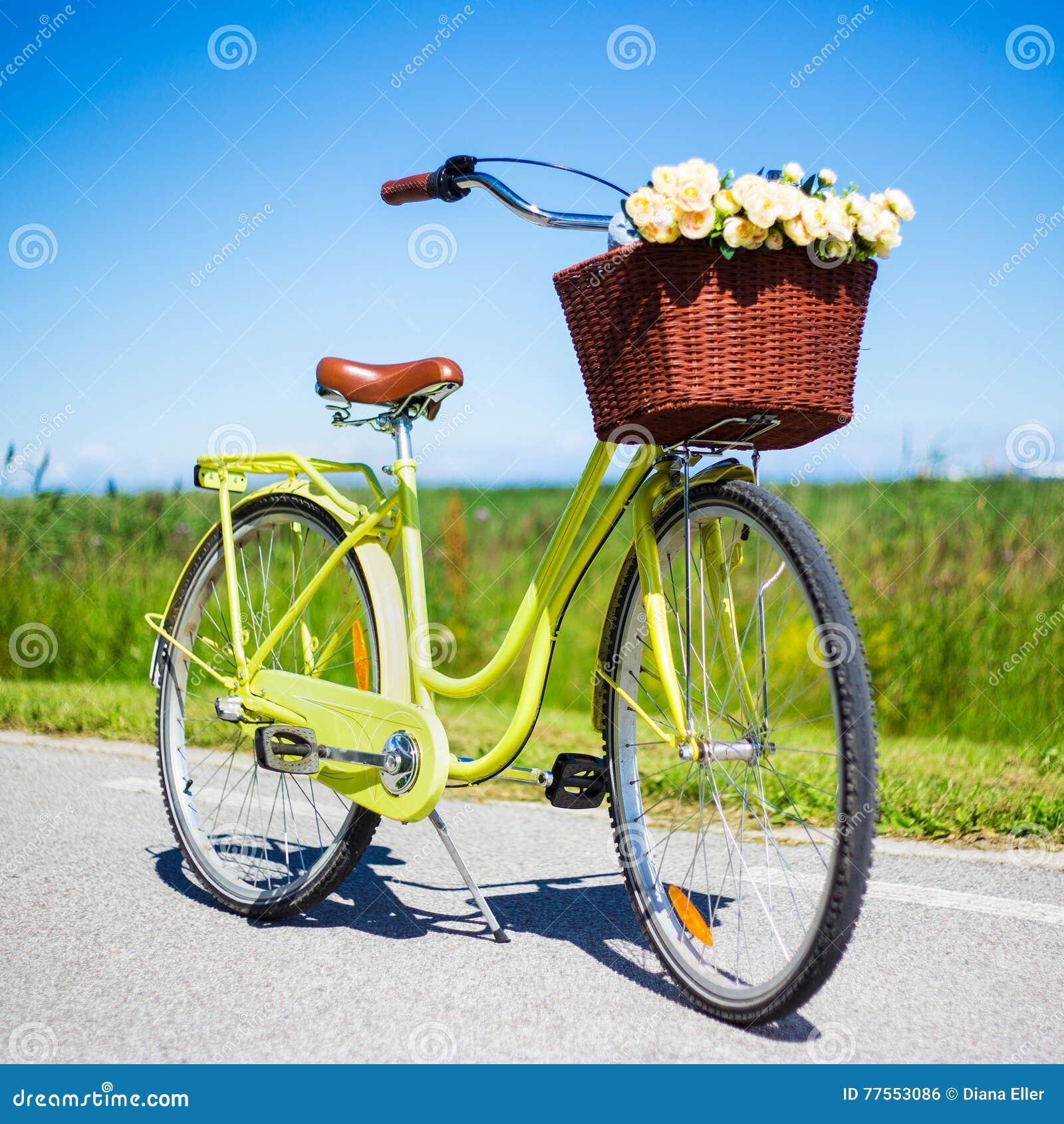 Retro cykel med den vide- korgen och blommor i bygd