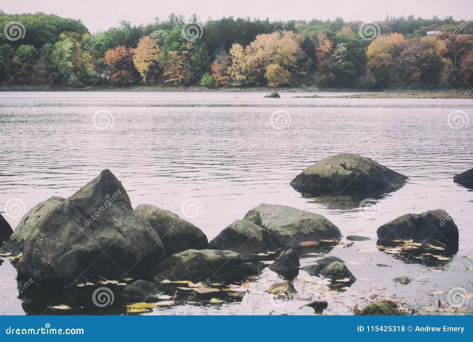 Retro filmu stylu fotografia Nowa Anglia las w spadku i jezioro