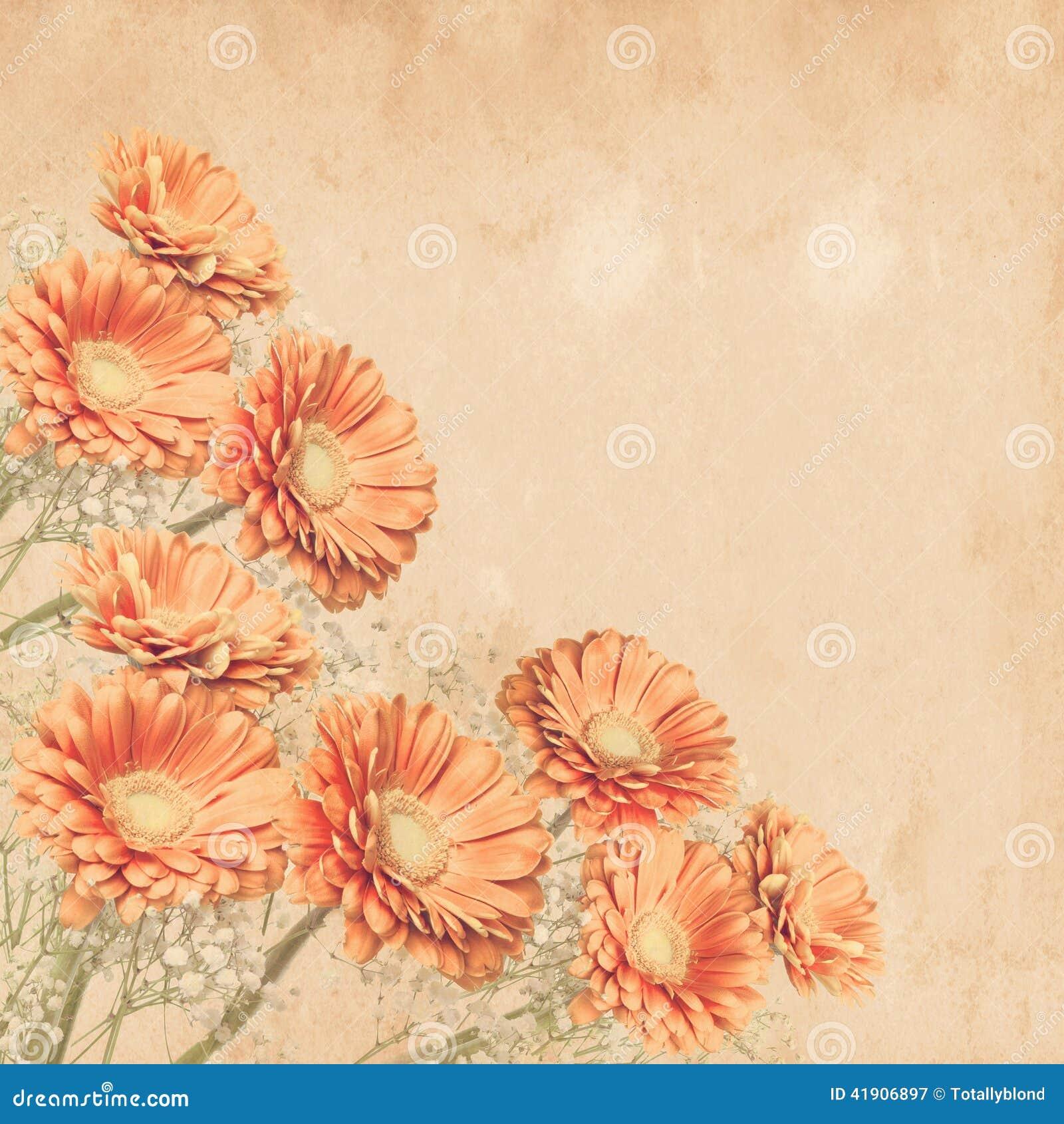 summer flower retro sunshine - photo #22