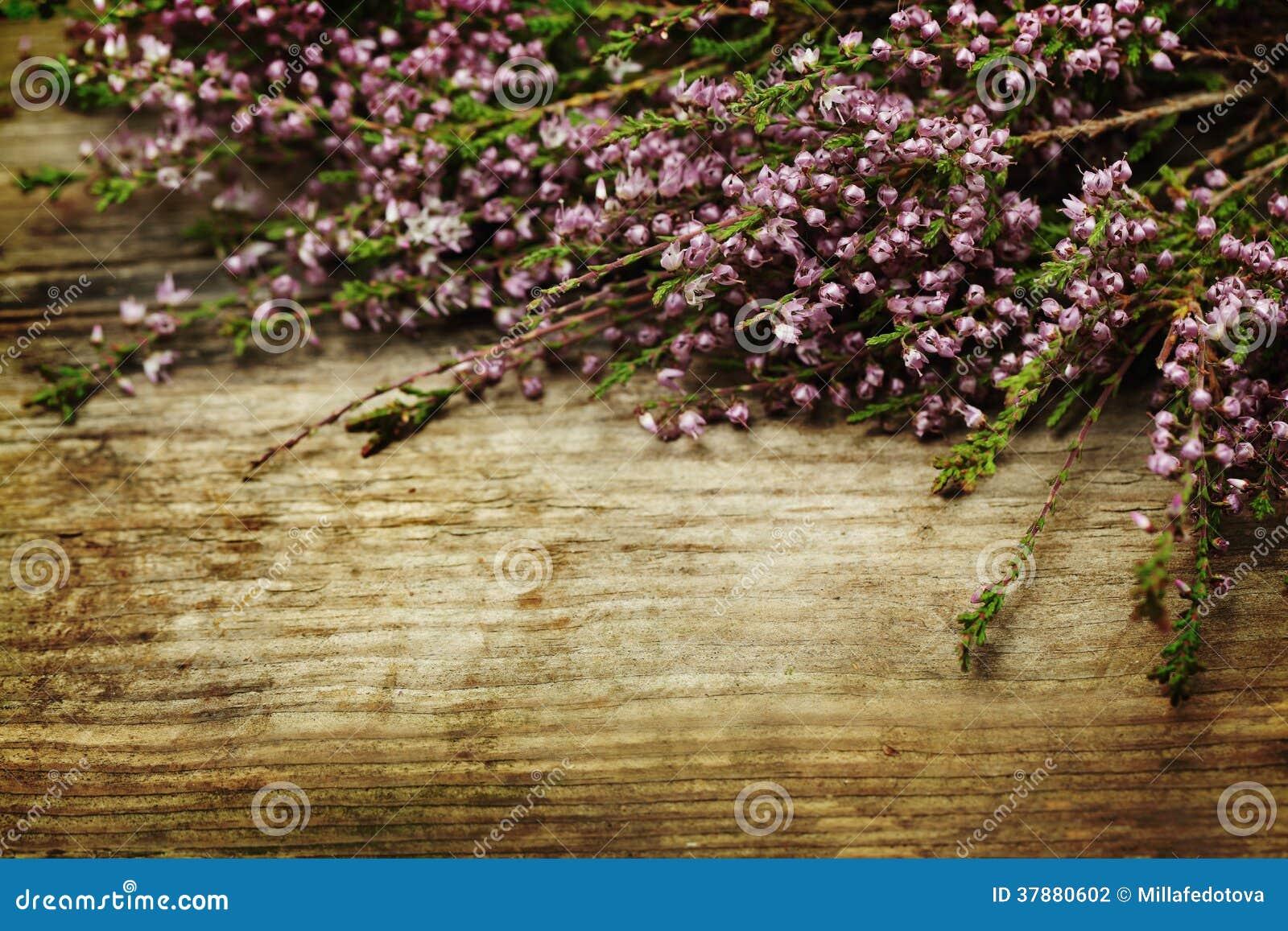 Retro gestileerde achtergrond met bloem