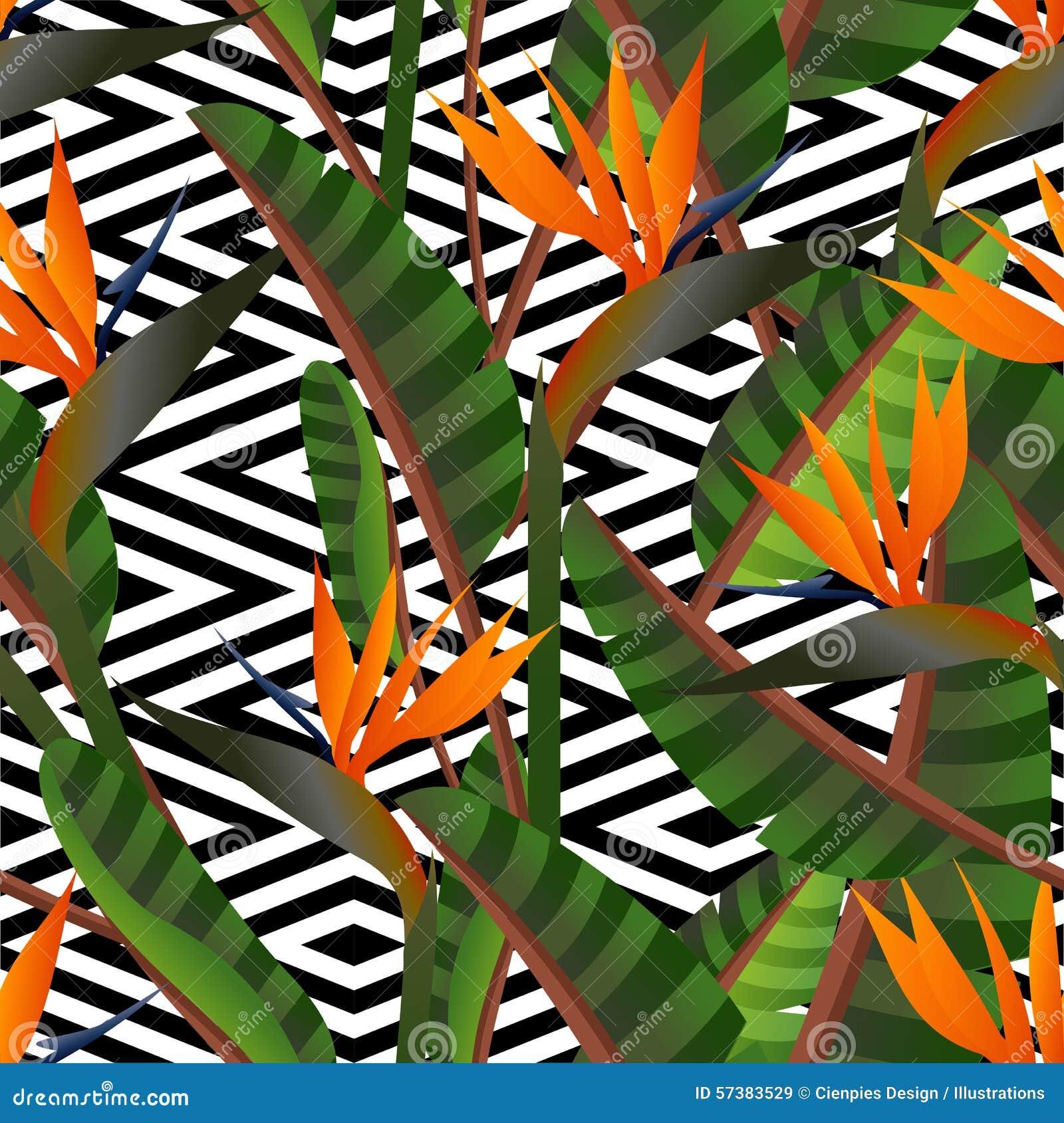 Retro het patroonachtergrond van de paradijsbloem