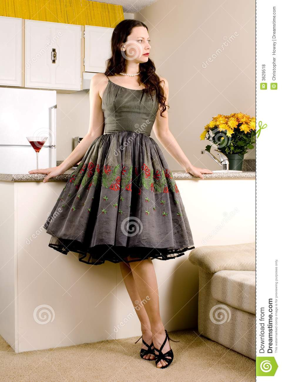 Retro housewife stock photo image of martini people for Classic housewife