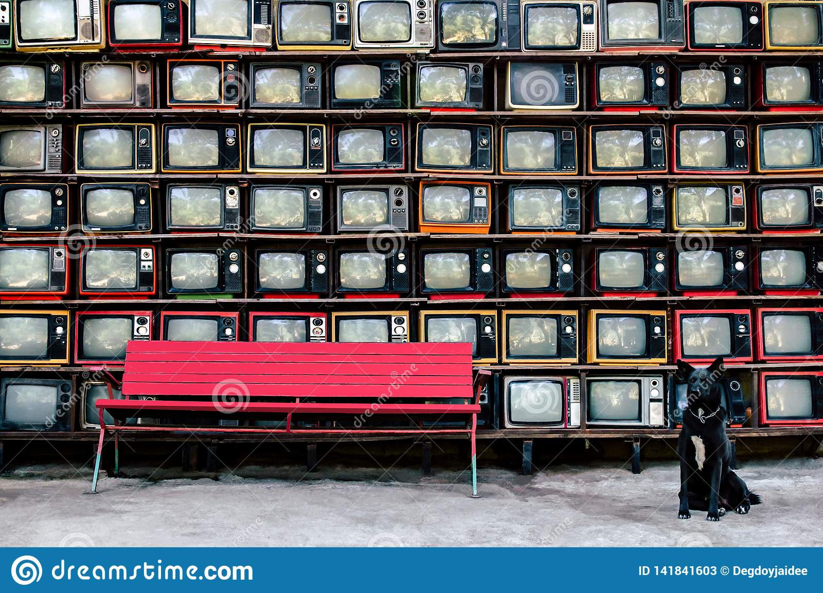 Retro style old television from 1950, 1960 and 1970s.With Red bench and black dog is looking camera.