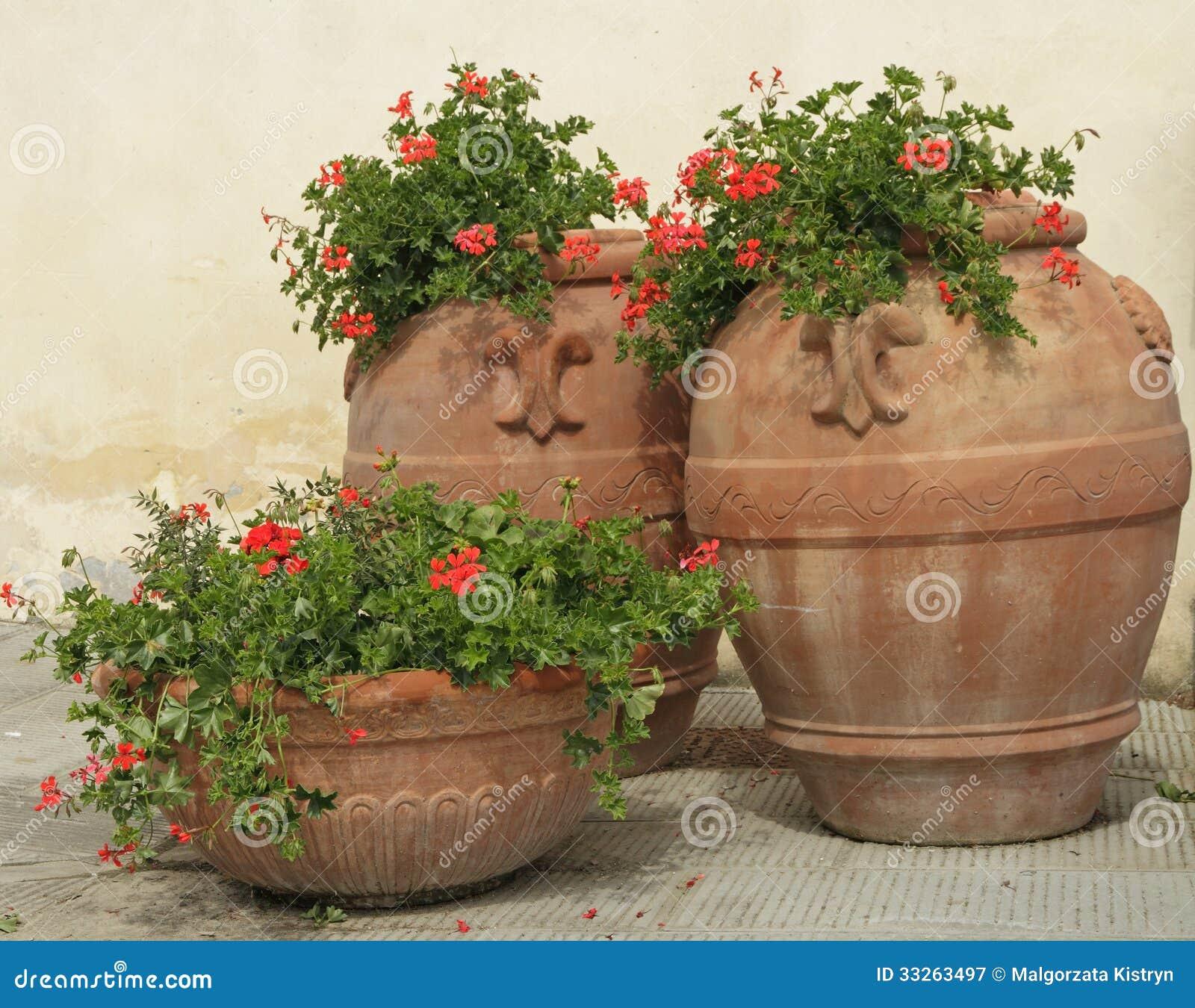Retro vasi di terracotta con i fiori del geranio immagine for Vasi in terracotta prezzi