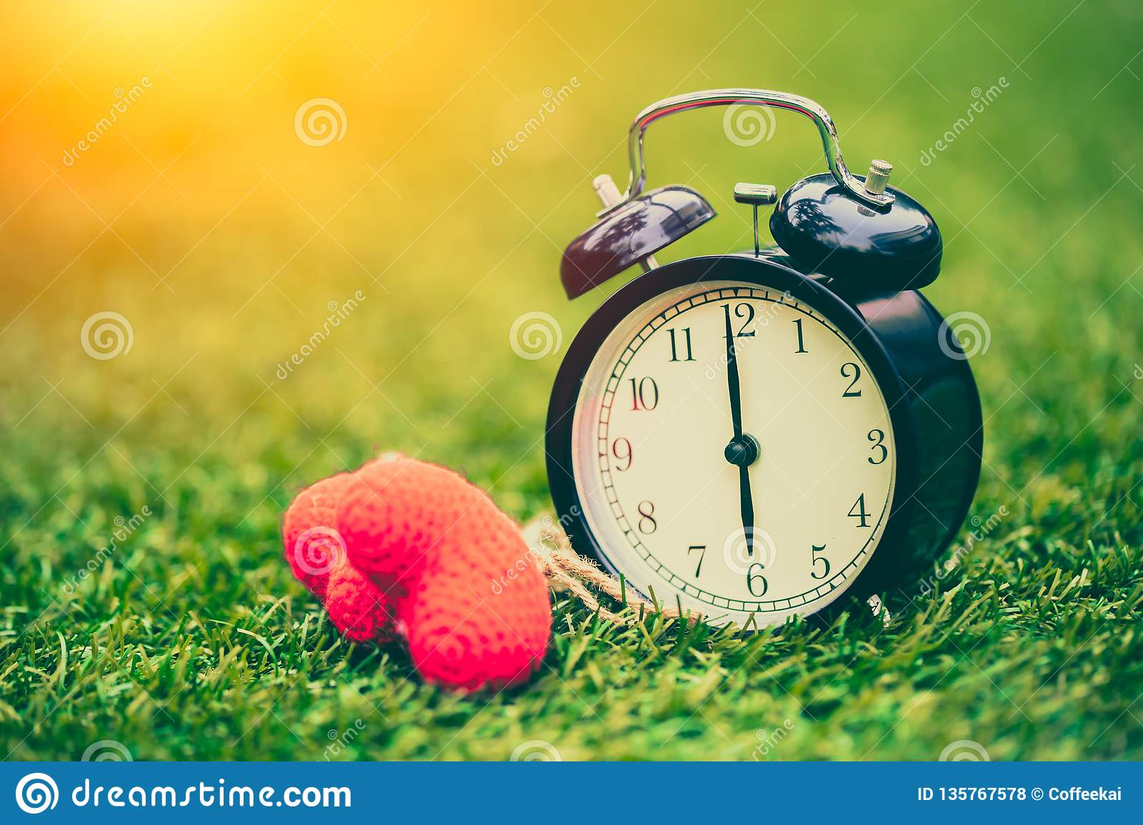 Vintage old clock on the green grass with heart love times memory concept