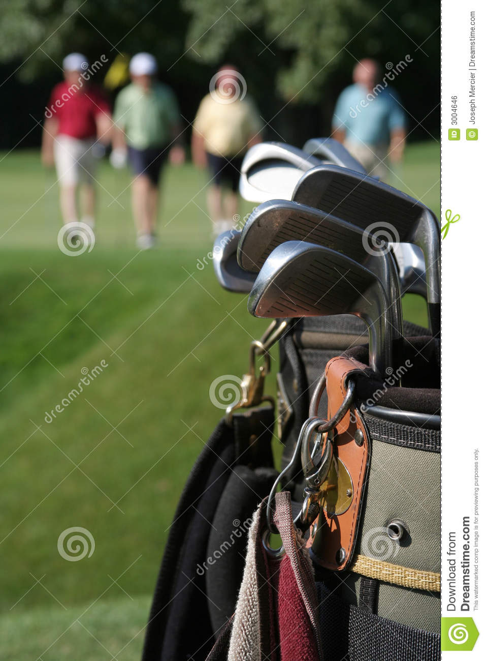 Returning Golfers and Golfbag