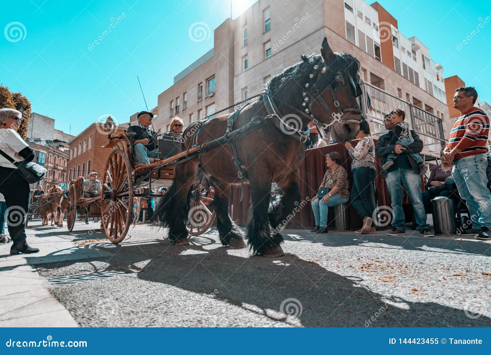 Reus, Espa?a En marzo de 2019: Caballo que tira de un coche alrededor del centro de ciudad en la cabalgata del festival de las tu