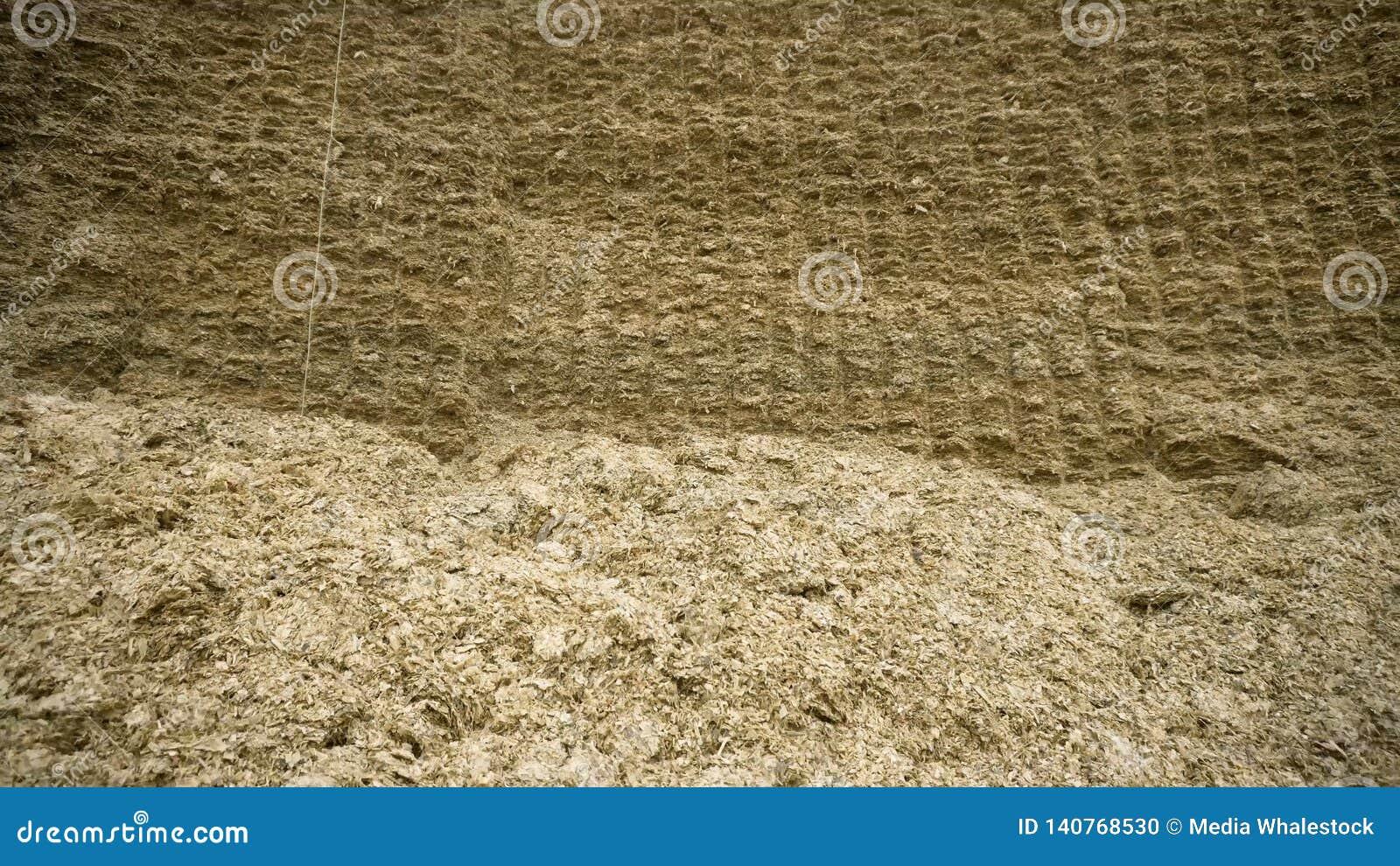 Reusachtige hooiberg lengte Ruwe reusachtige muur van samengeperst hooi voor voorraad in de winter voor het voeden van veevee Lan