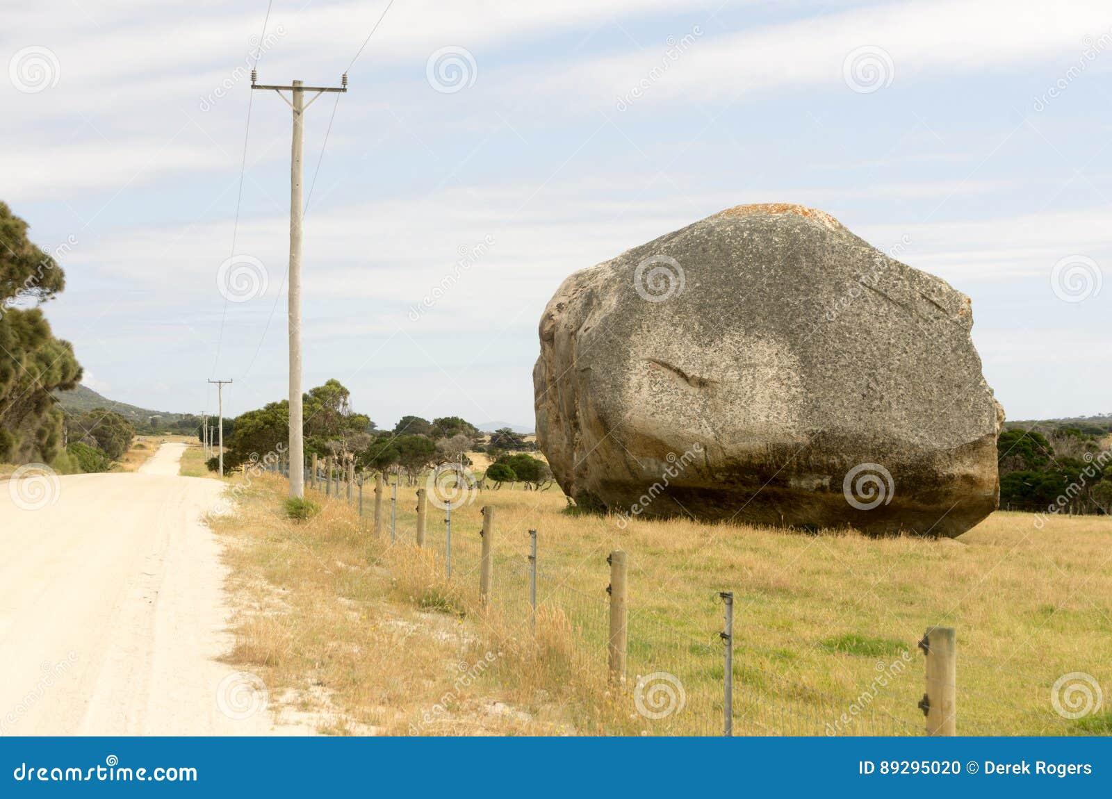 Reuzekei, Flinders-Eiland, Tasmanige