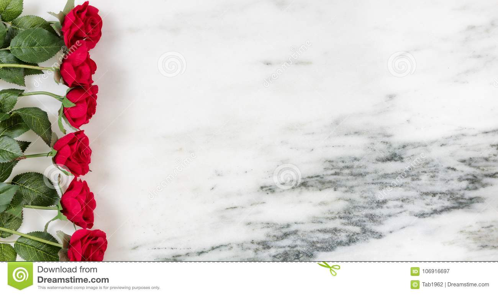 Rewolucjonistki róży granica na marmuru kamieniu dla wakacji