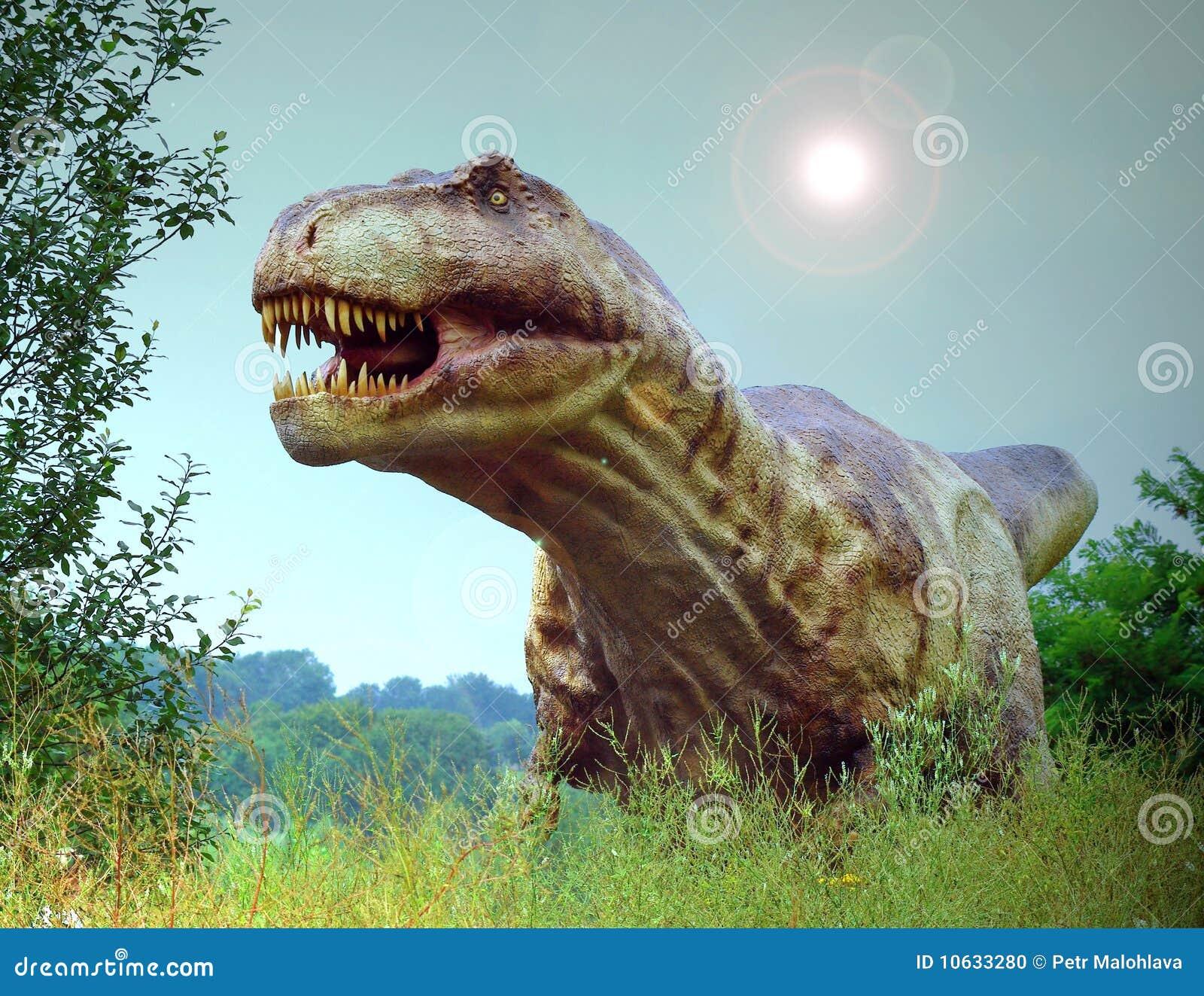 Rex de Tyranosaurus