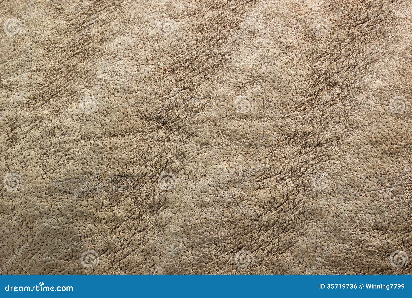 Rhino Skin Texture Royalty Free Stock Image - Image: 35719736