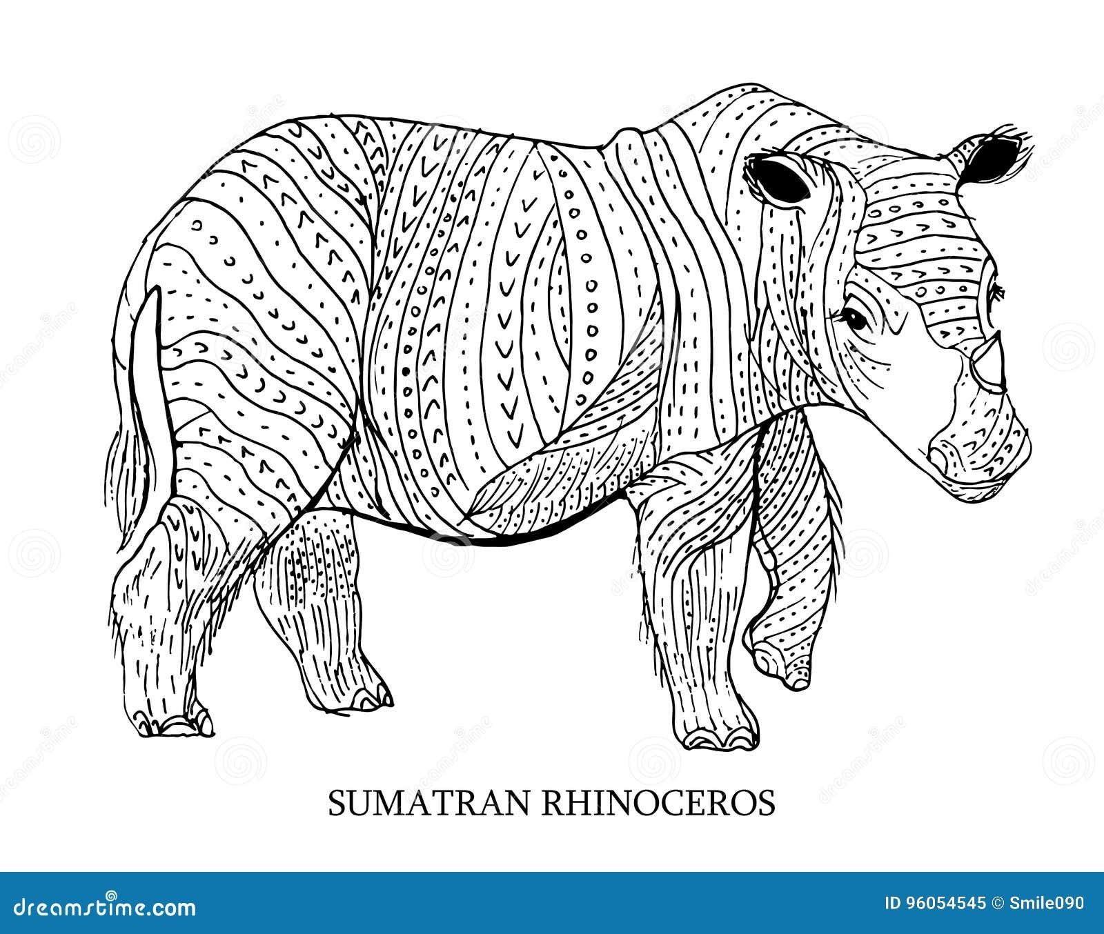 Rhinocéros de Sumatran Animal rare, statut de conservation Illustration de vecteur