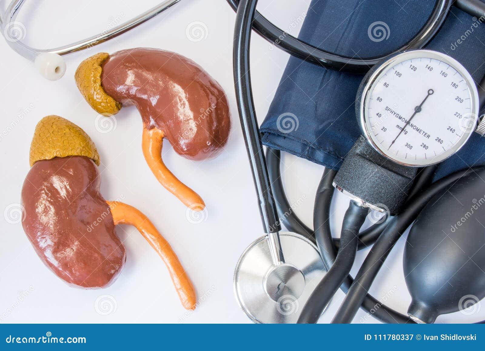 Presión arterial alta y un riñón