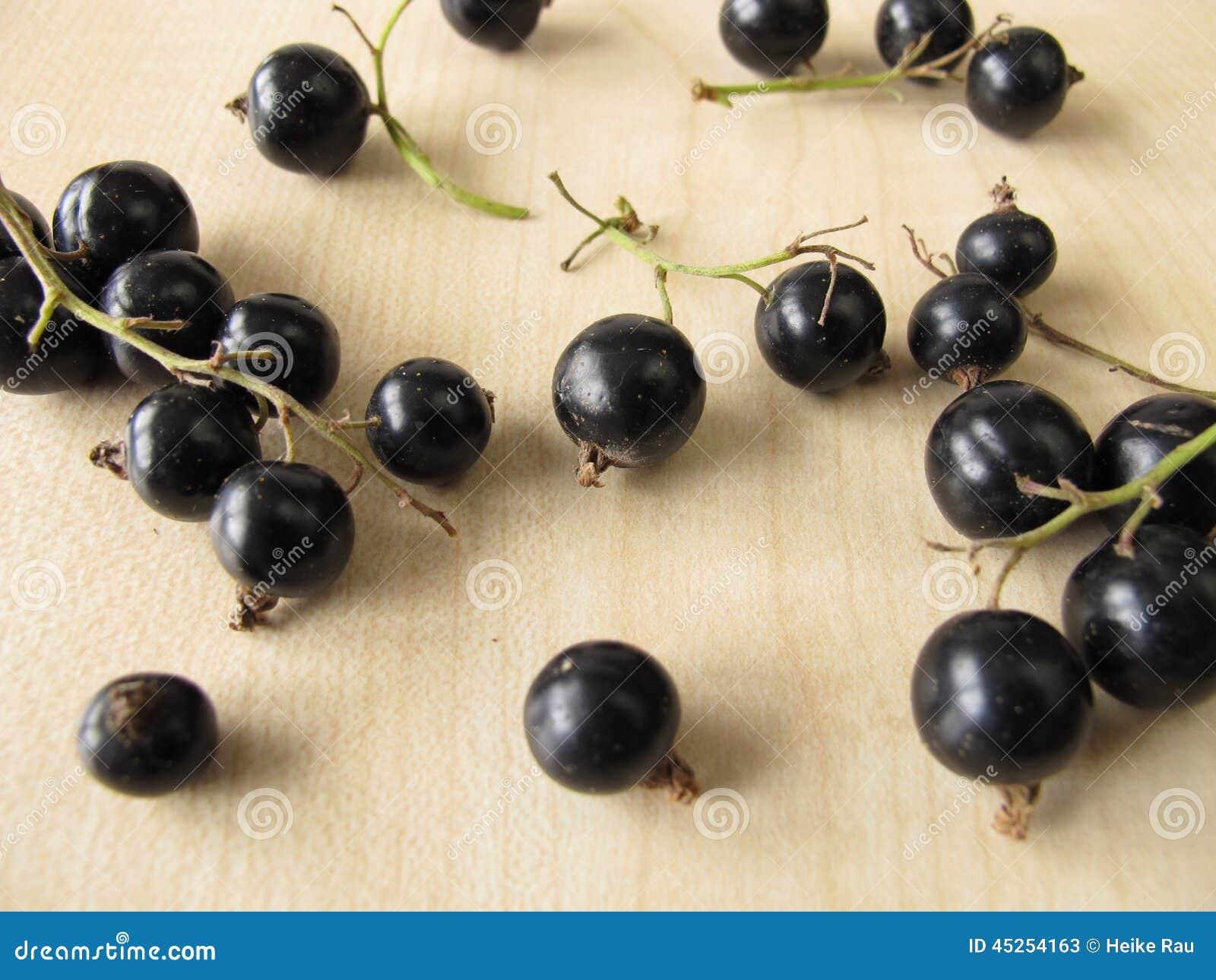 Ribes neri