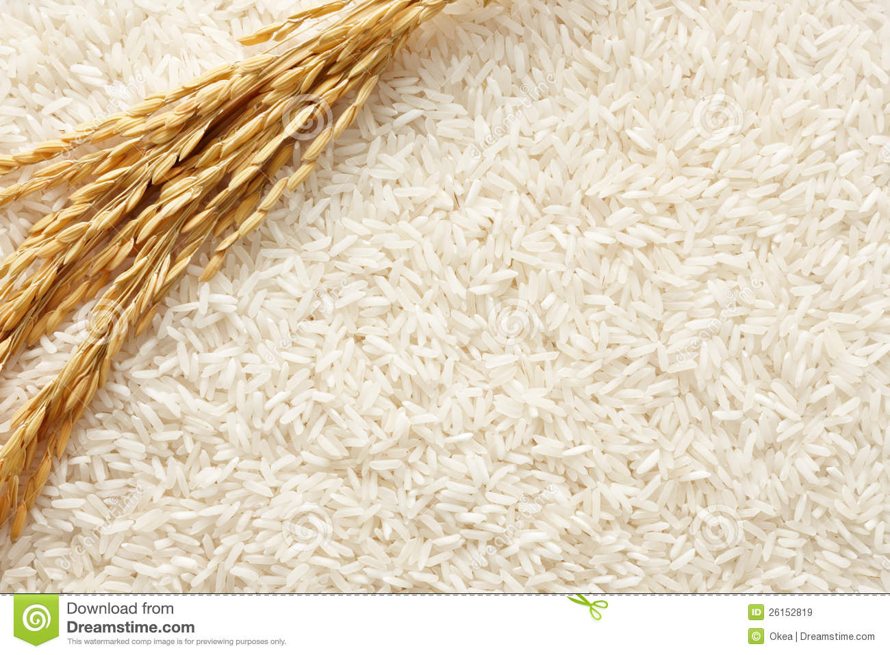 Rice Background Royalty Free Stock Images - Image: 26152819