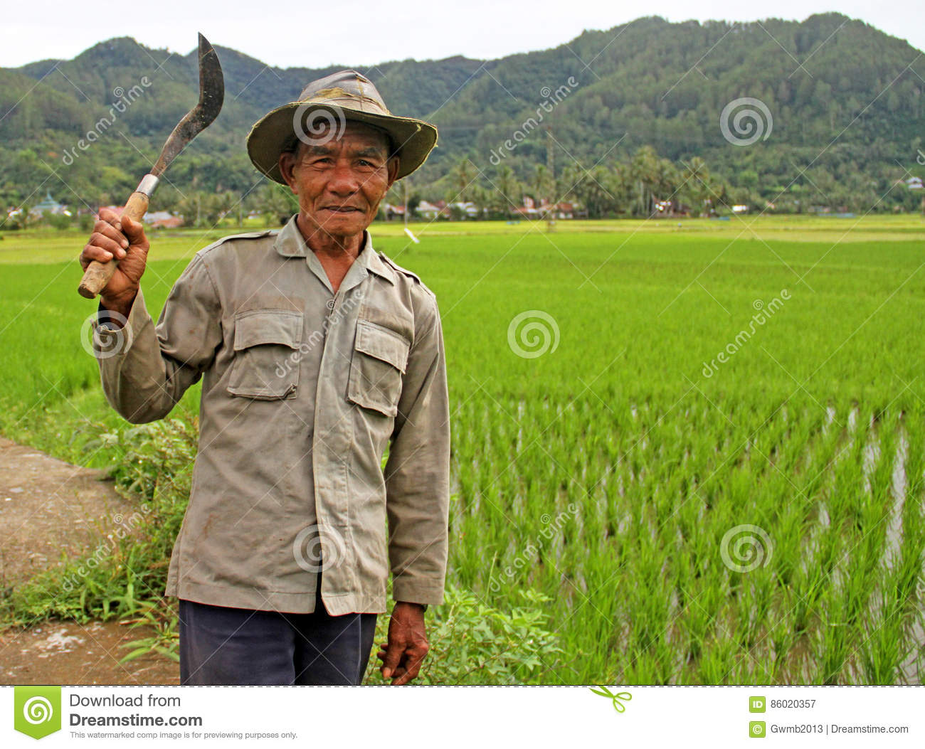 Rice Field Worker in the Harau Valley in West Sumatra, Indonesia