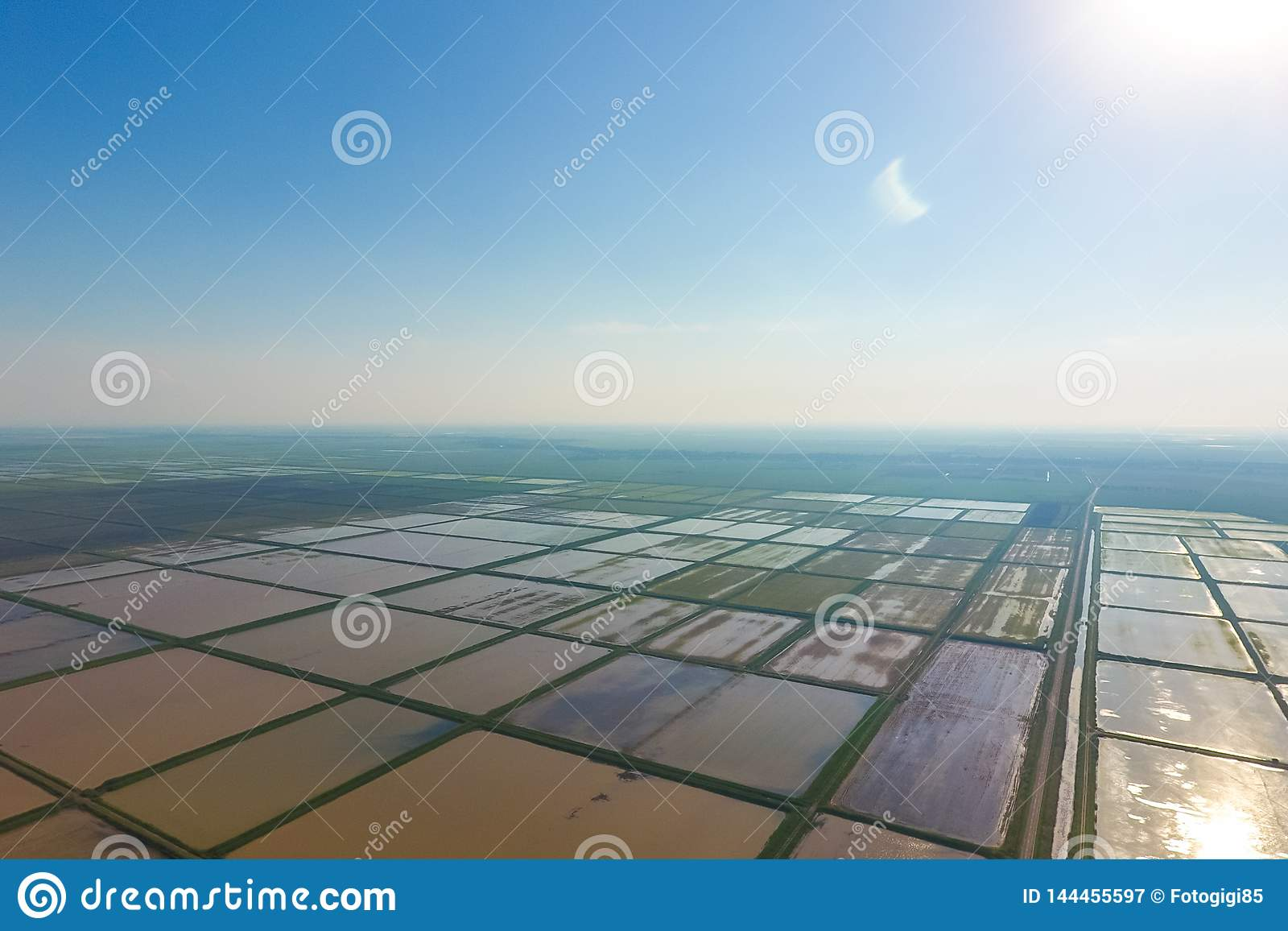 The rice fields are flooded with water. Flooded rice paddies. Agronomic methods of growing rice in the fields