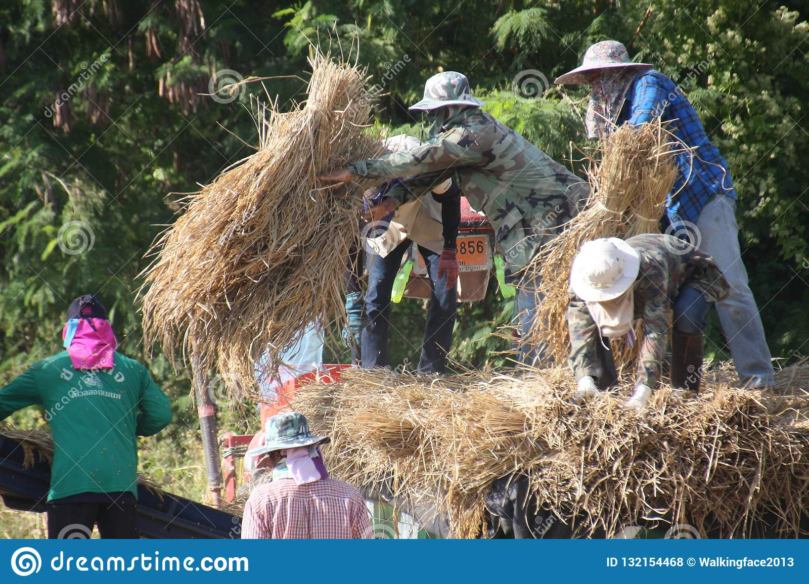 Agricultural work and agricultural product