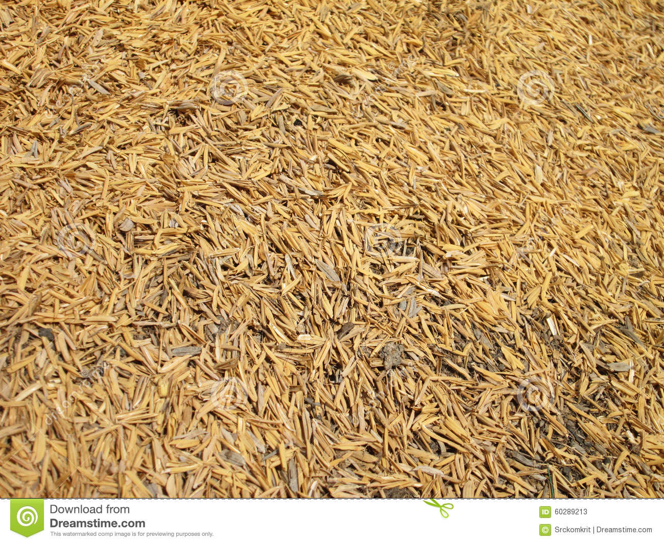 rice husk clusters the ideal option