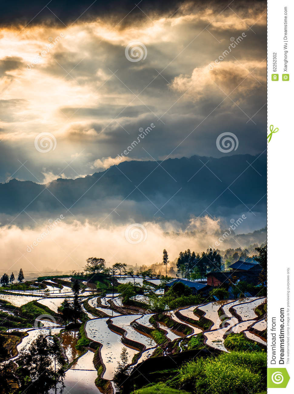 Download Rice Terraces And Colorful Clouds Stock Photo - Image of clean, field: 62252302