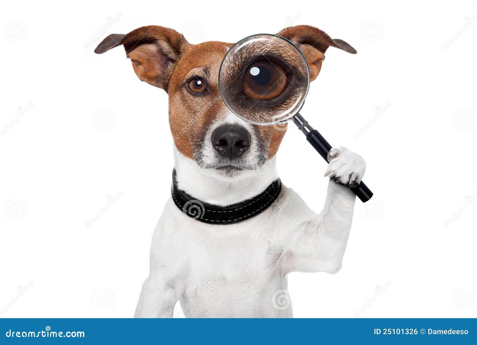 grand cane guys Aeration grand cane, la aeration grand cane, la has the best aeration prices in grand cane, la.