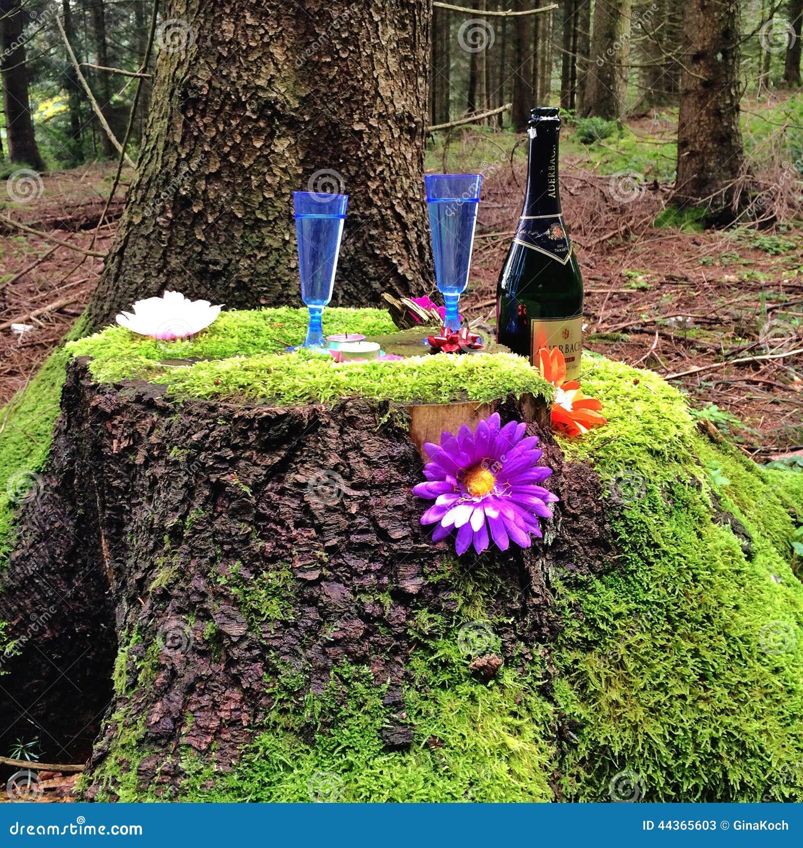 Ricezione di Champagne nella foresta