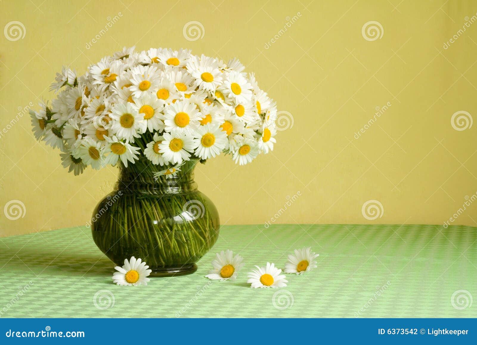 минусы ваза с ромашками картинки стать модератором Ведь