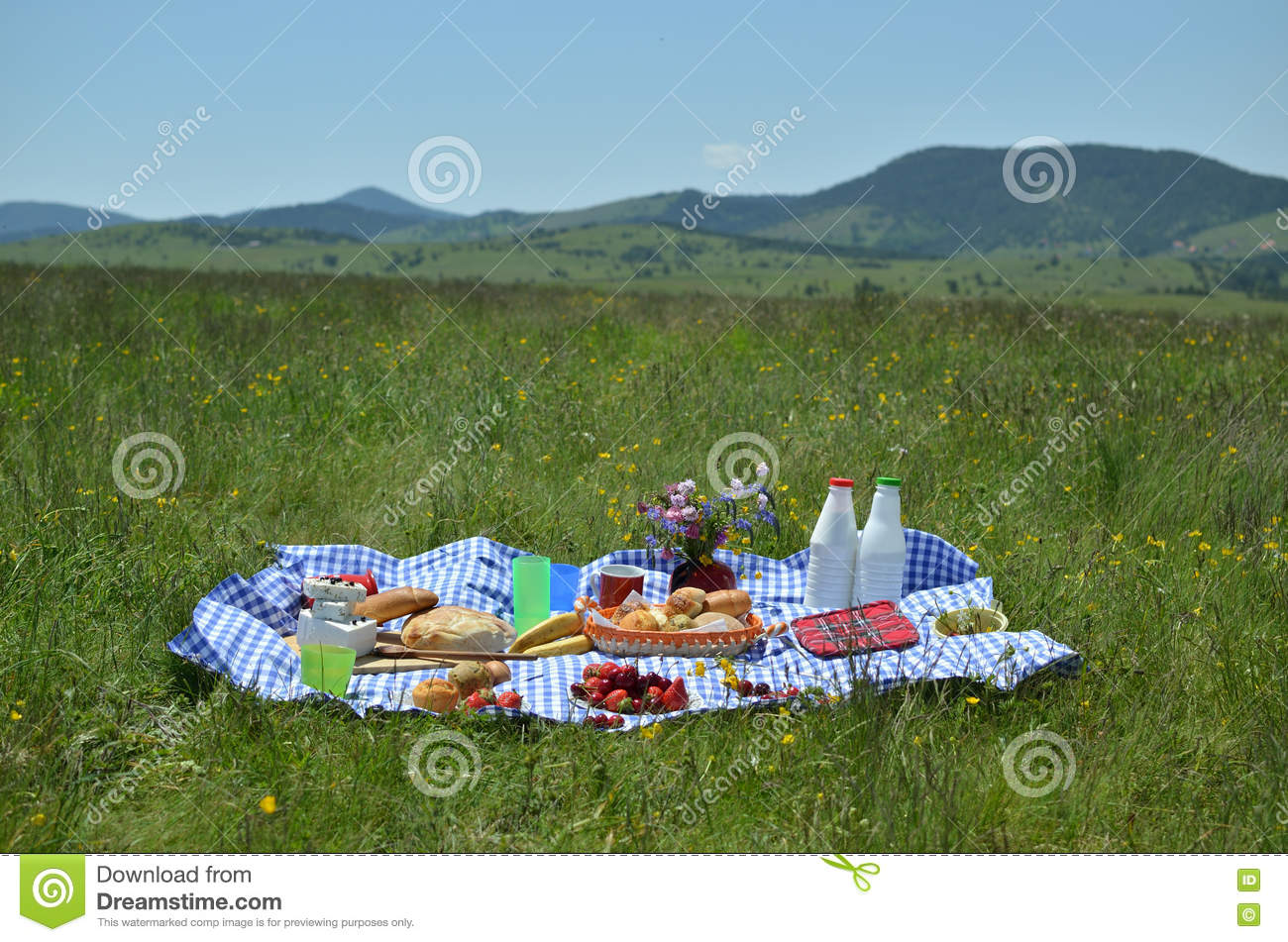 Rich Picnic Food