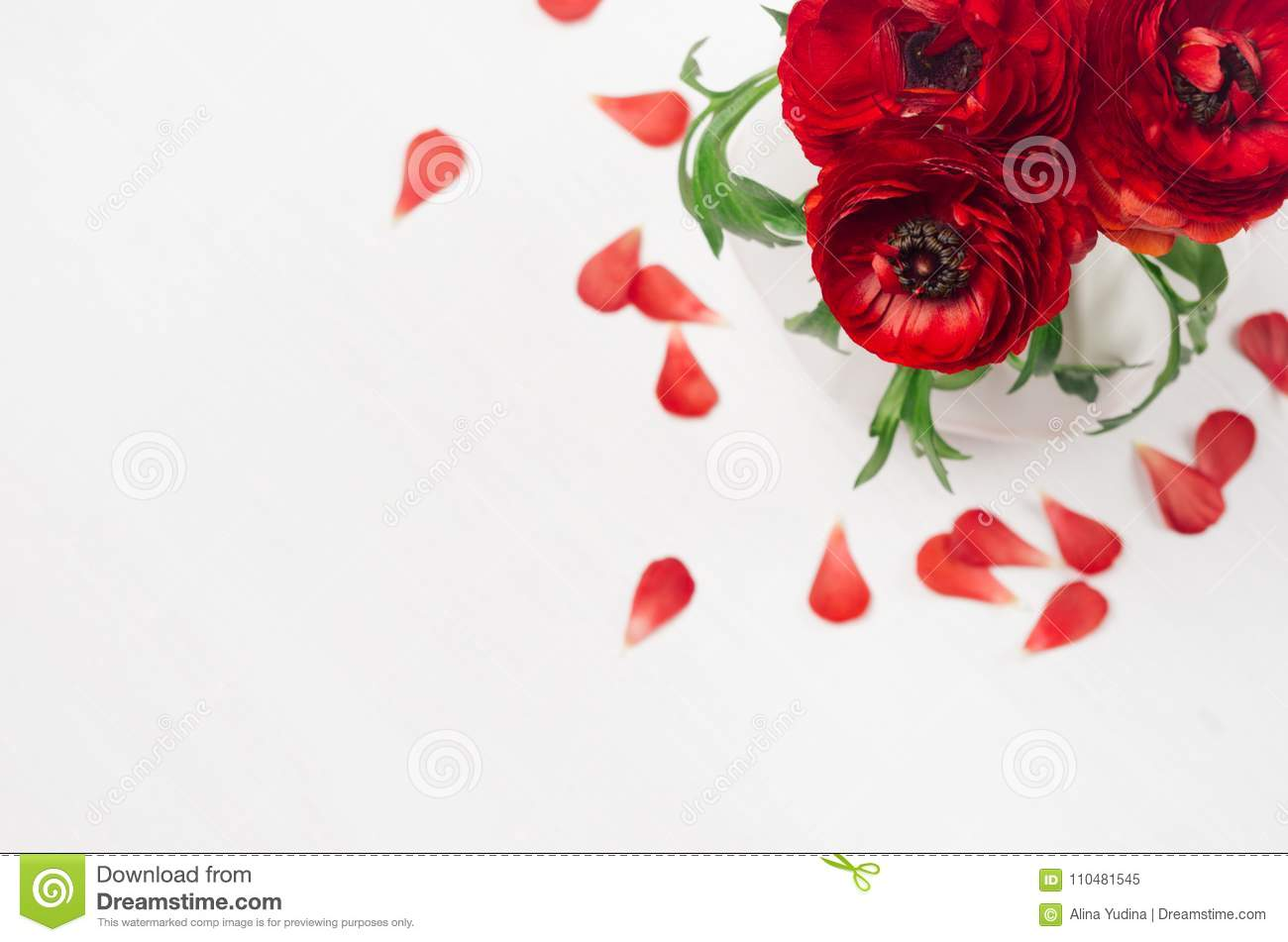 Rich red buttercup flowers in vase with petals top view on soft white wooden table. Elegance spring bouquet.