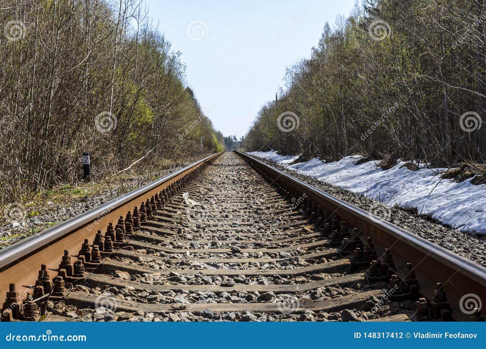 Richtung einer einspurigen Eisenbahn f?r alte Dampfz?ge oder Dieselz?ge Schienen und Lagerschwellen gelegt in einen sch?nen Wald