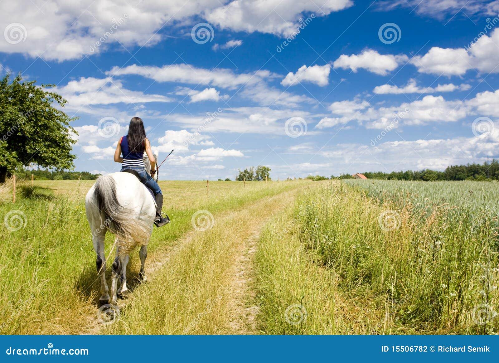 Rid- hästrygg