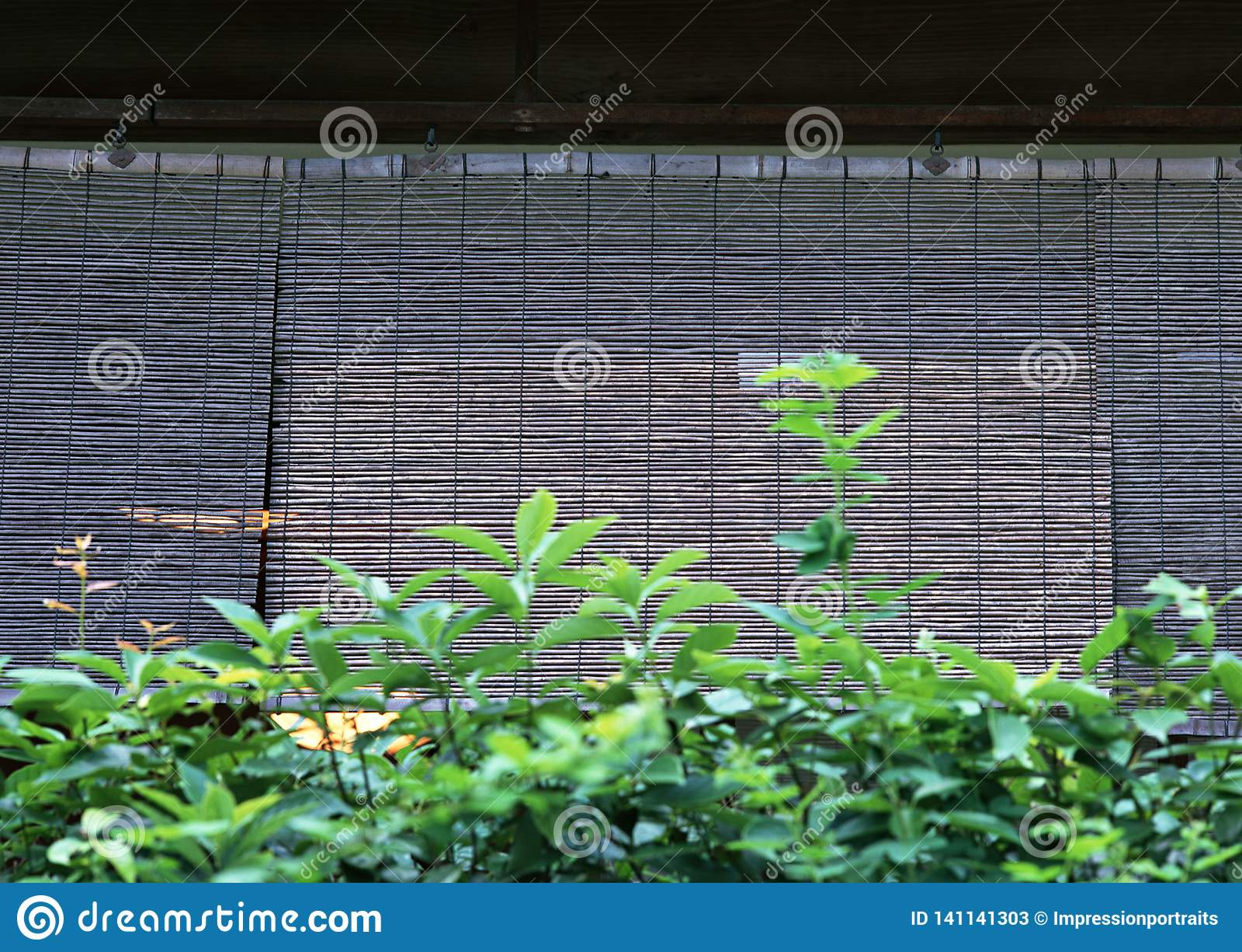 Rideau en bois en bambou japonais pour le fond de fenêtres