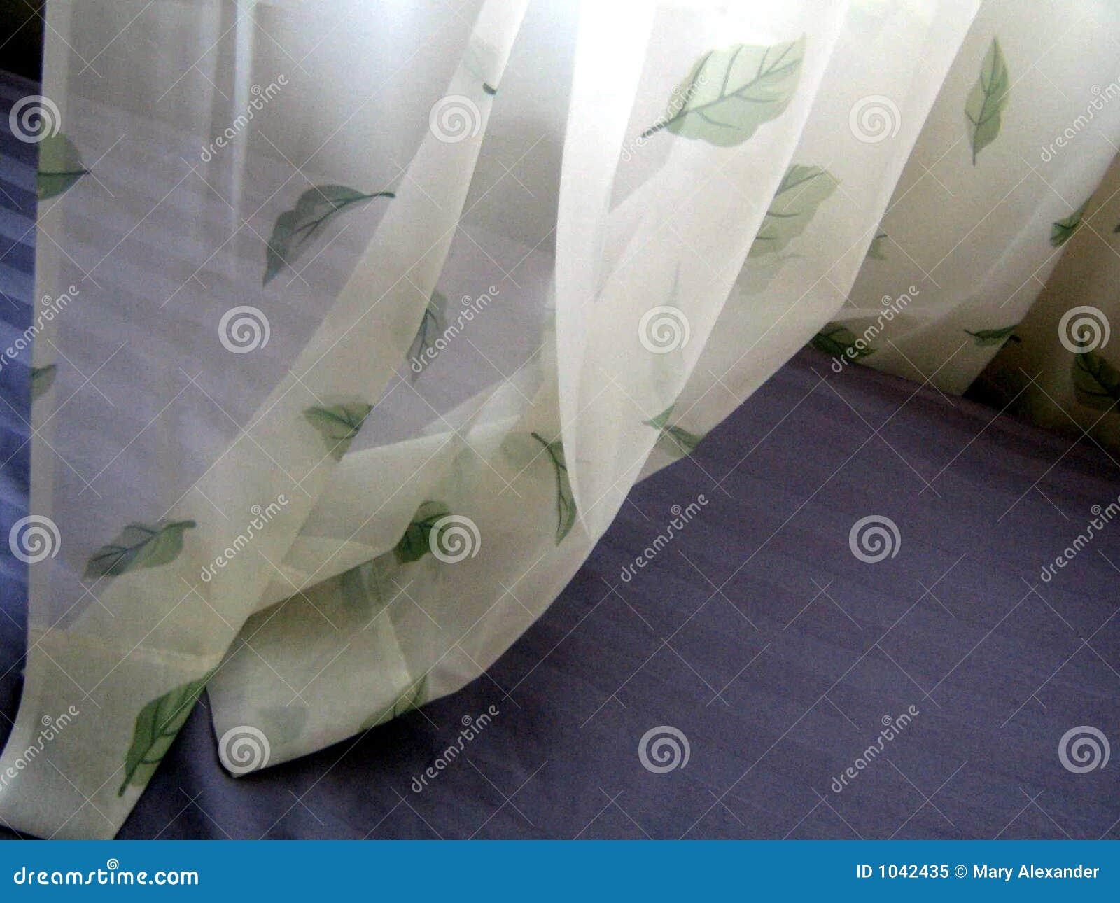 Rideaux et feuilles