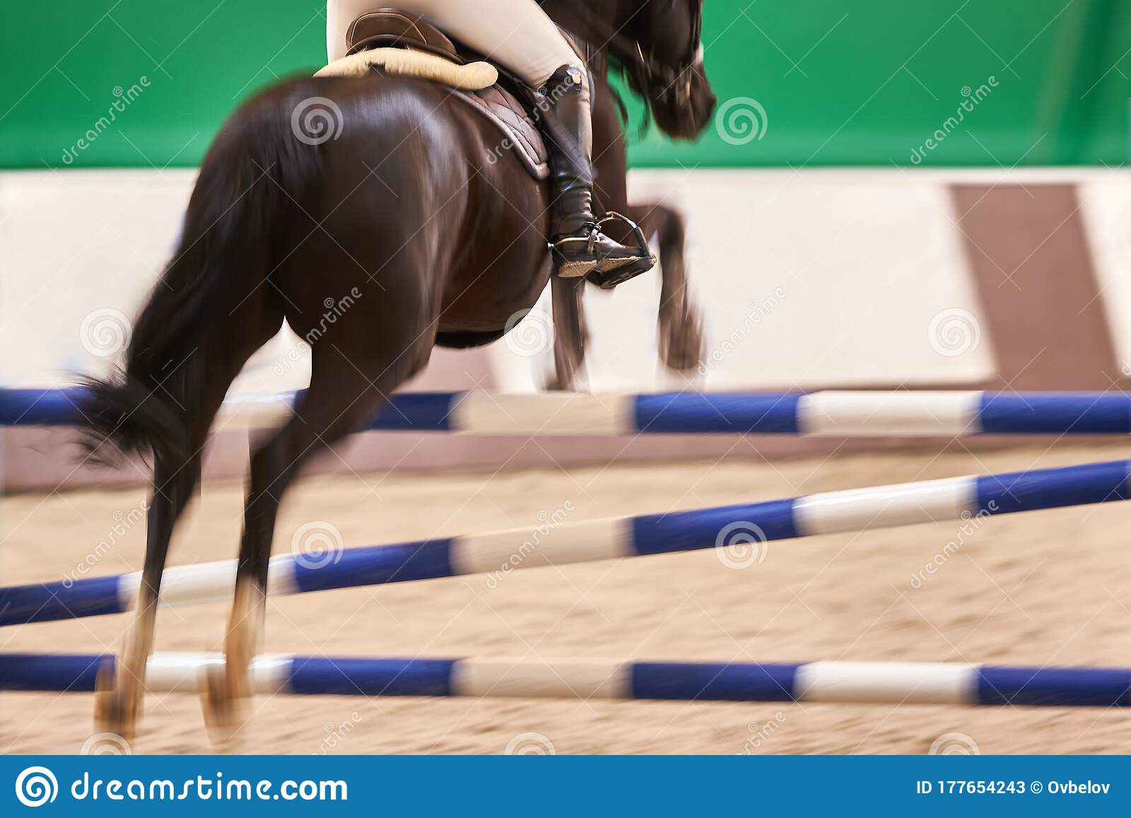 Rider On A Black Horse Jumps Over An Obstacle Motion Blur Focus On The Rider S Boot Stock Image Image Of Jockey Champion 177654243