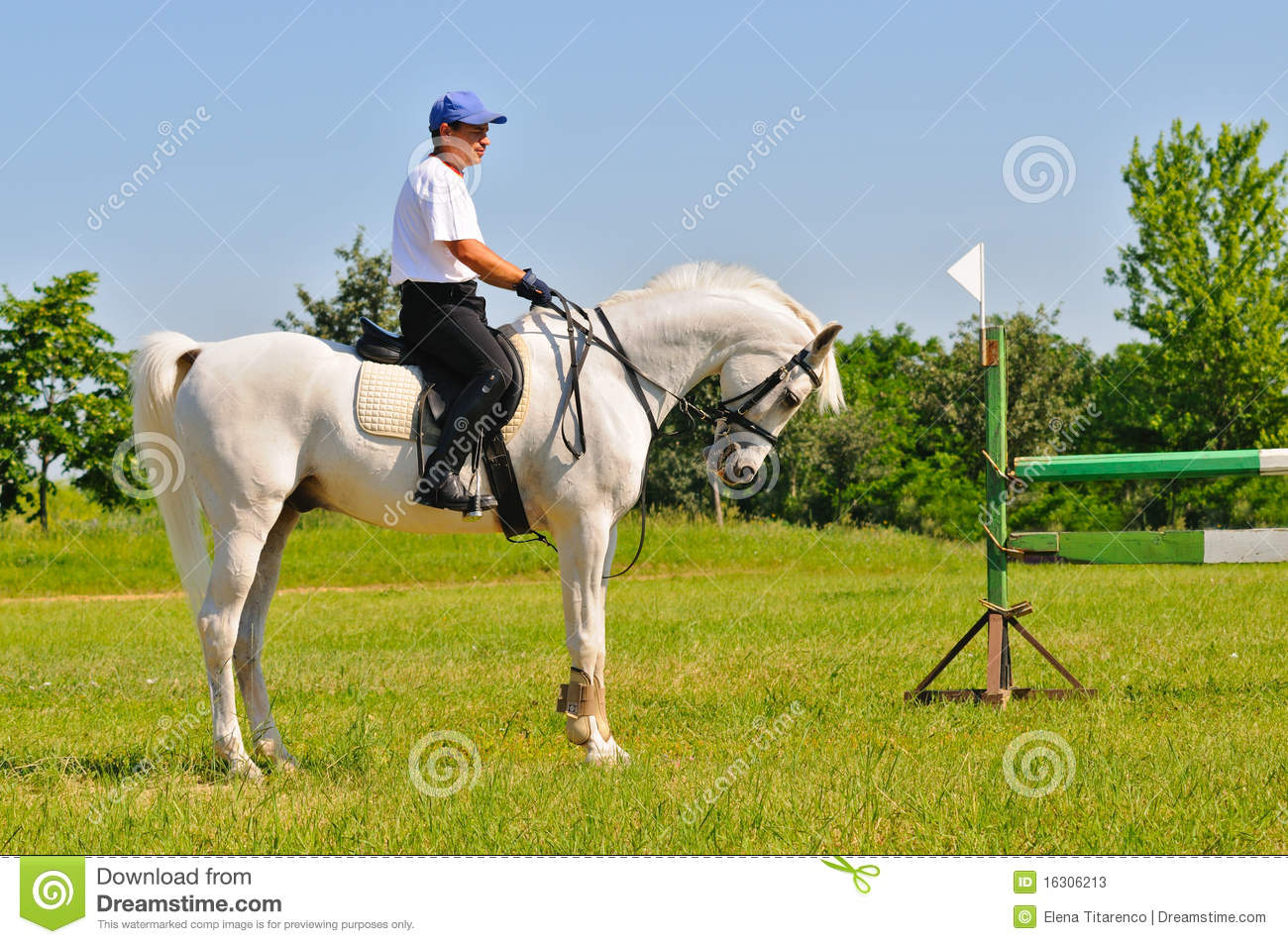 Rider On White Arabian Horse Stock Image Image Of Sportive Male 16306213
