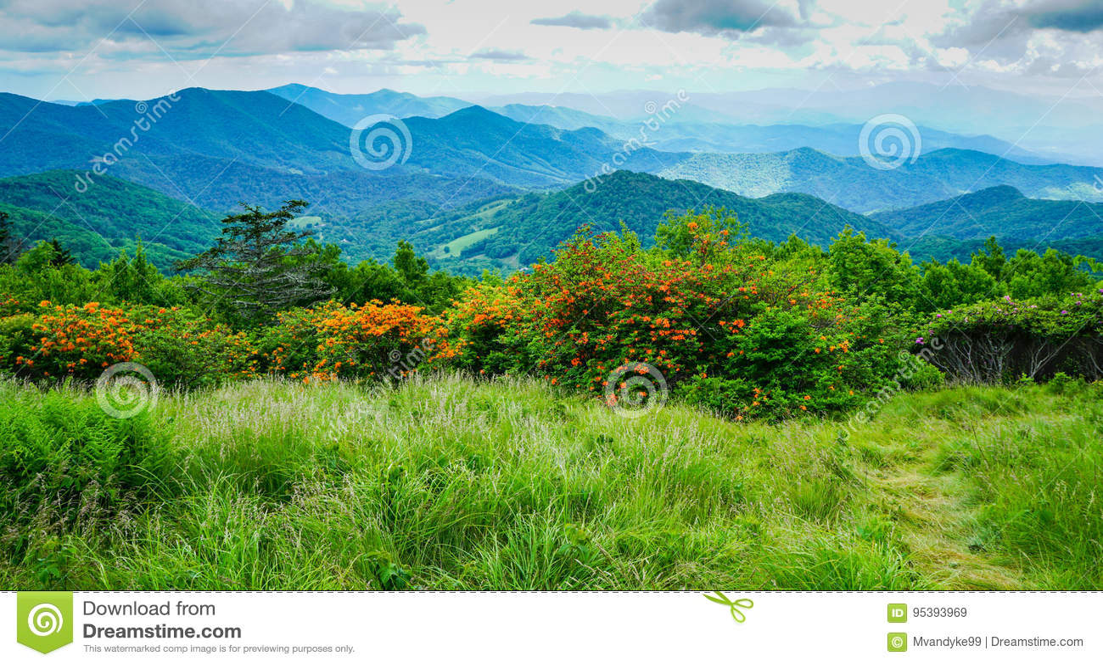 Ridge Appalachian Mountains North Carolina azul