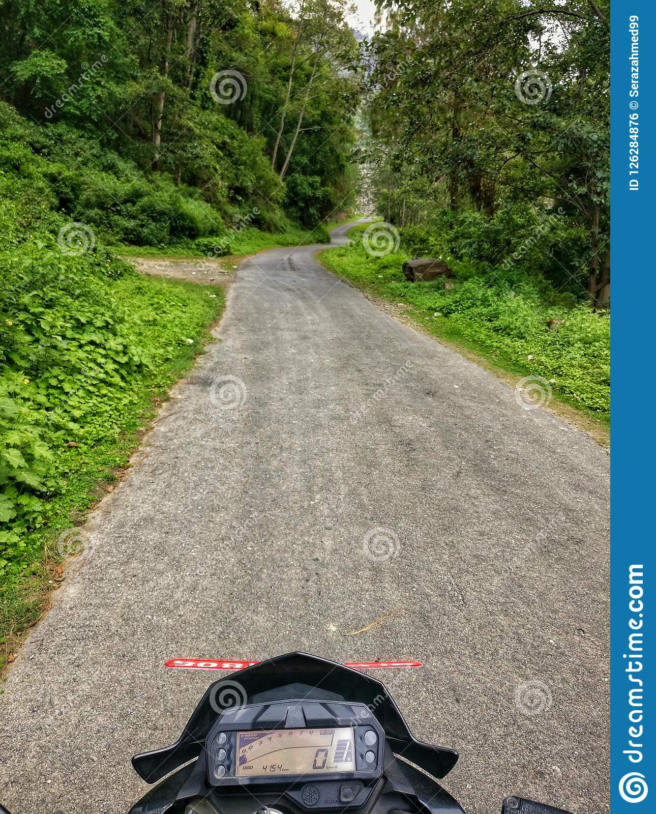 Bike Ride Through The Forest Stock Photo - Image of markhu