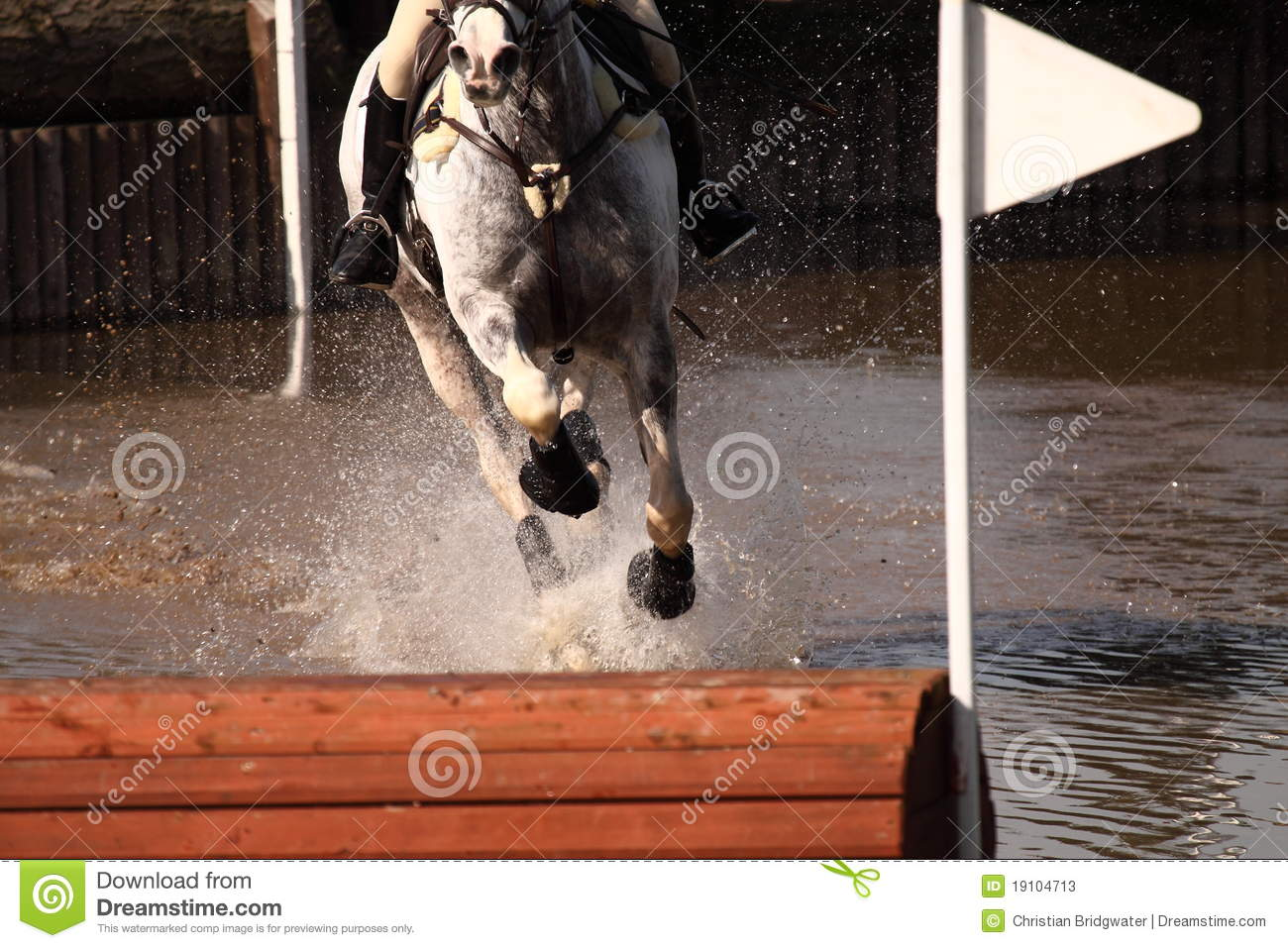 Riding horse through water