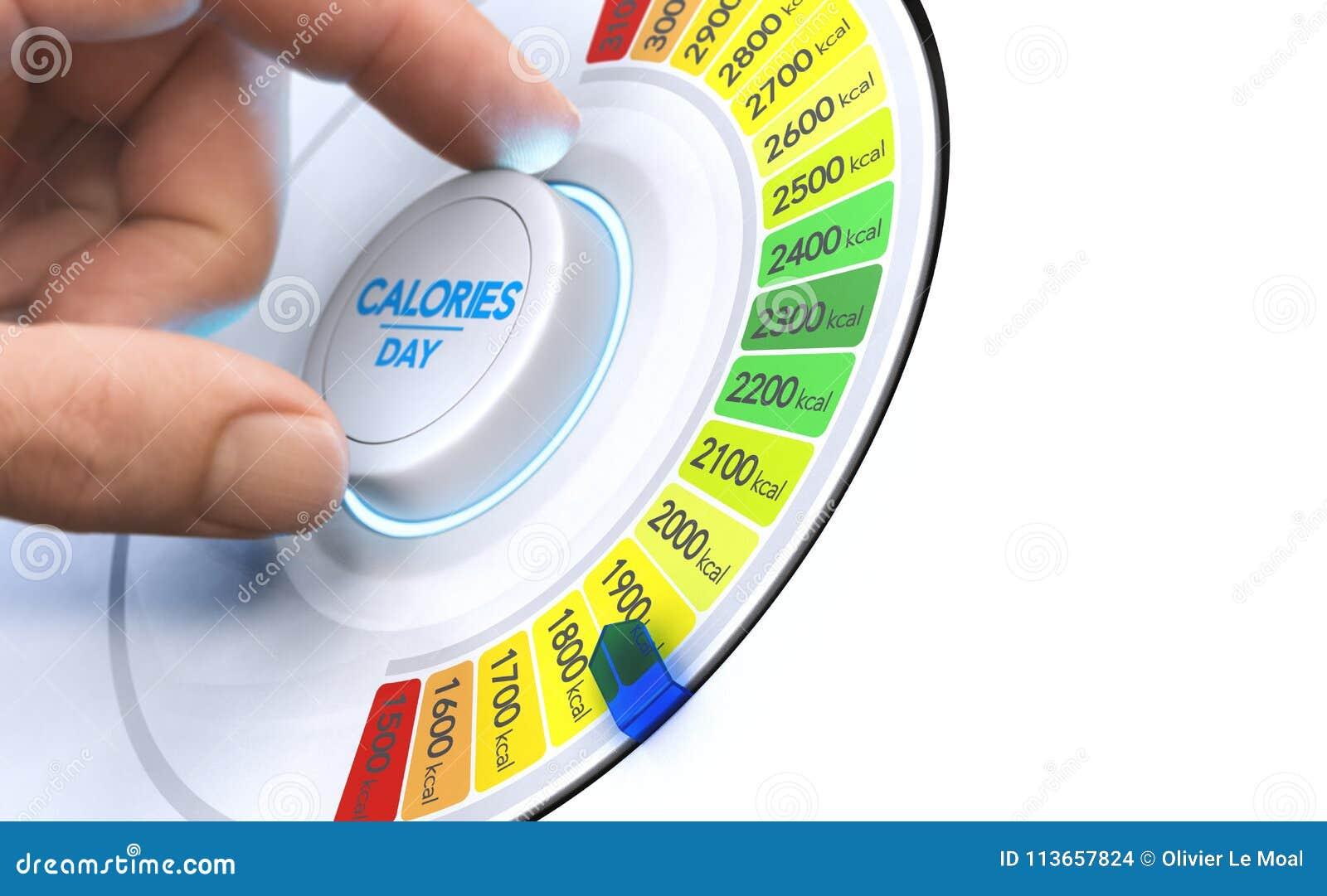 dieta da 2400 calorie per uomo