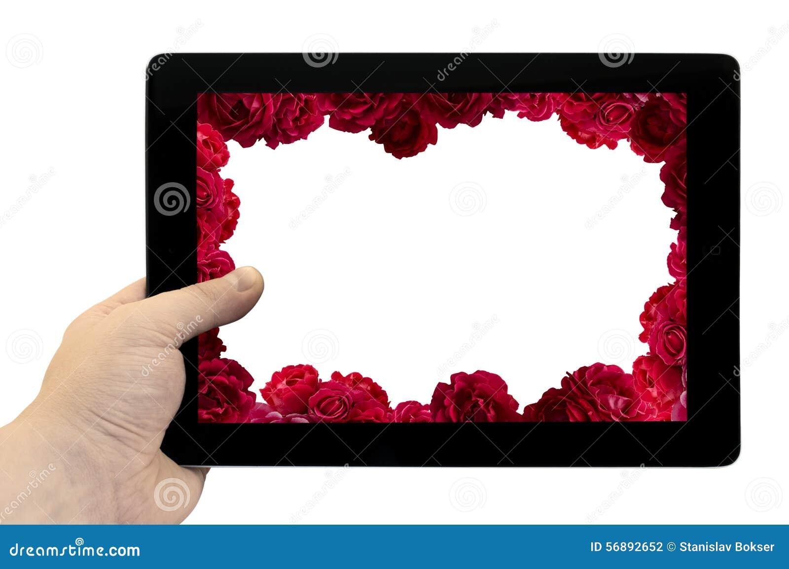Riduca in pani il PC a disposizione con la struttura con il cespuglio del fondo dei fiori della rosa rossa sullo schermo isolato