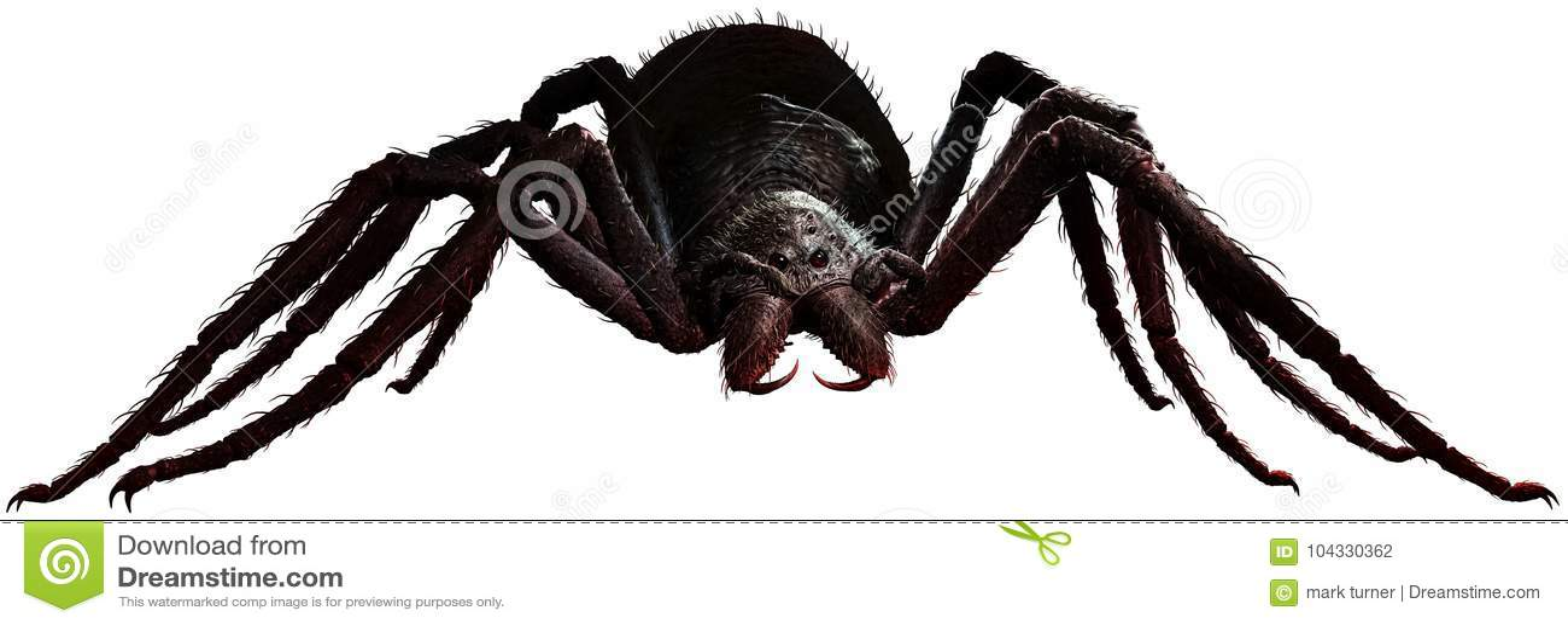 Riesige Illustration der Spinne 3D