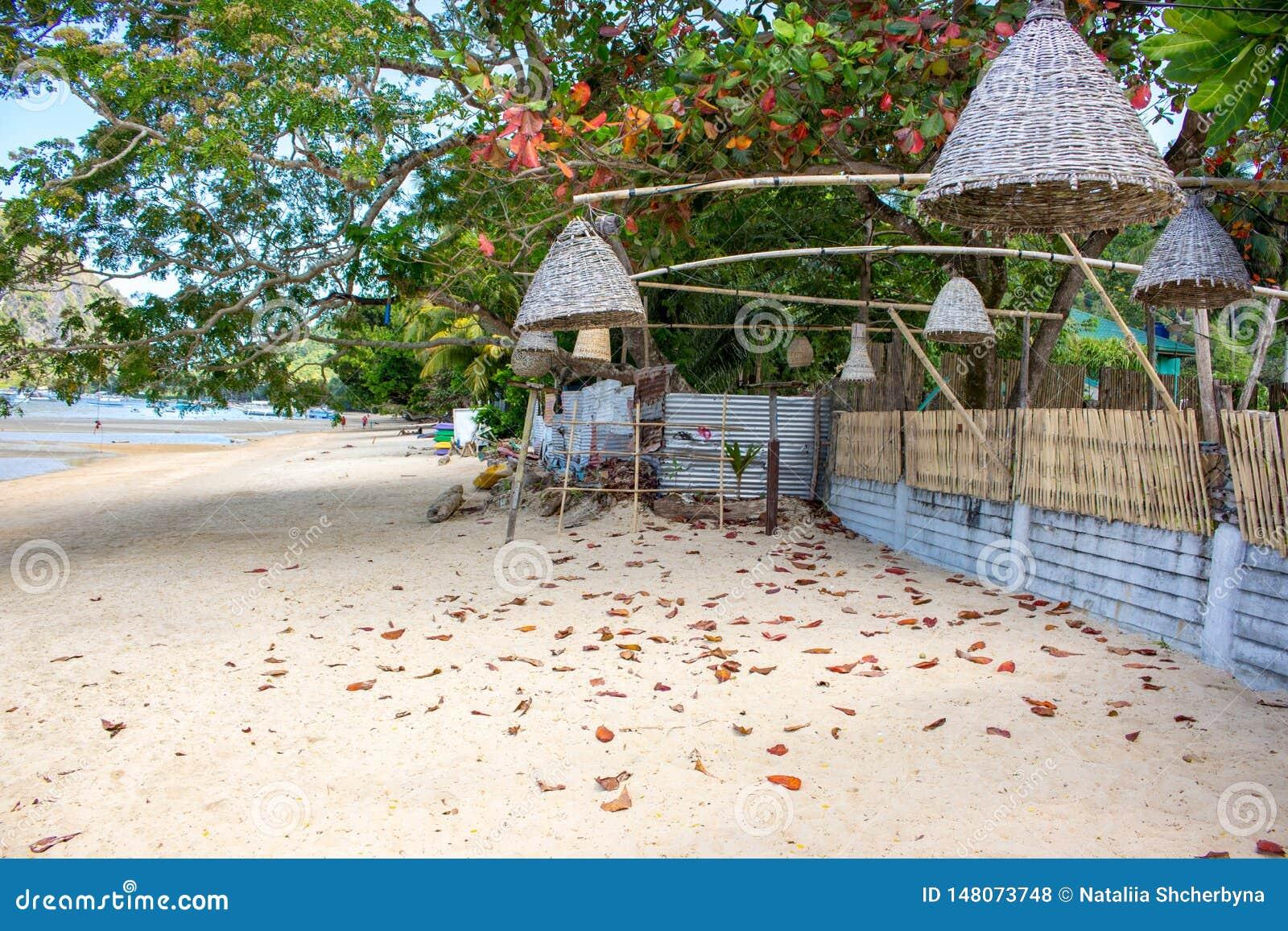 Rieten lampen die van bomen op het strand hangen, Filippijnen Decoratie van openluchtlantaarns op zeekust Tropische vakantie