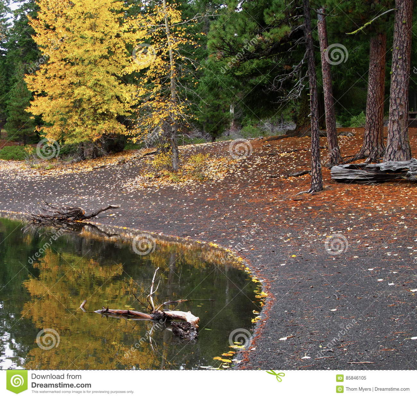 Riflessioni di caduta in esploratore Lake
