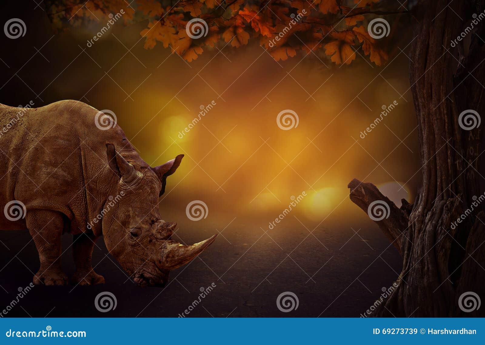 Rihno对树梦想的黑暗的背景在森林
